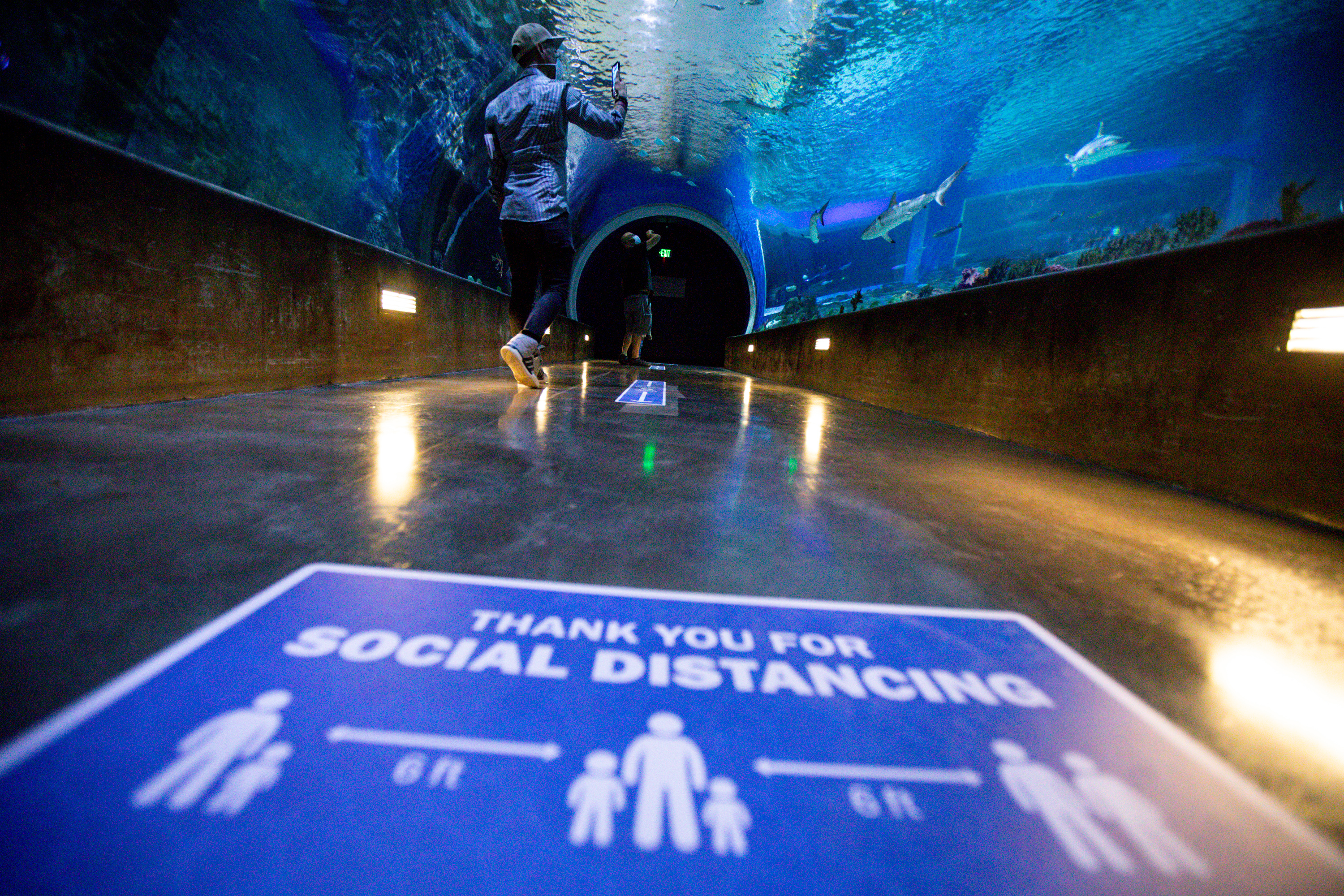 People visit the Loveland Living Planet Aquarium in Draper on Saturday, May 9, 2020. The aquarium reopened to guests with entry times beginning at 10 a.m. to the last entry time at 7 p.m., and online ticket purchasing amid the COVID-19 pandemic. Signs throughout the aquarium encourage visitors to wear masks and practice social distancing.
