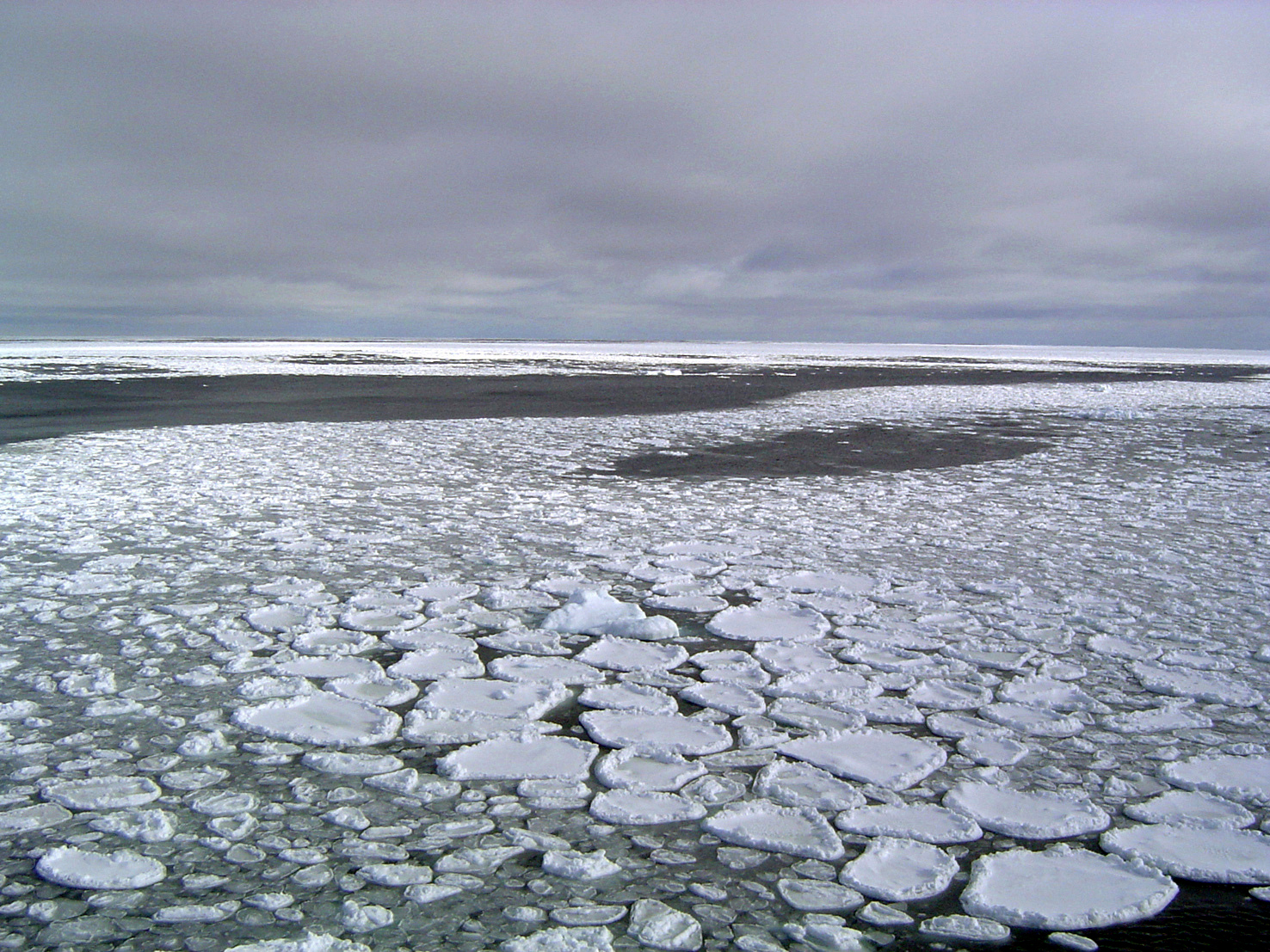 This January 2017 photo provided by Ted Scambos shows sea ice on the ocean surrounding Antarctica during an expedition to the Ross Sea. Ice in the ocean off the southern continent steadily increased from 1979 and hit a record high in 2014.