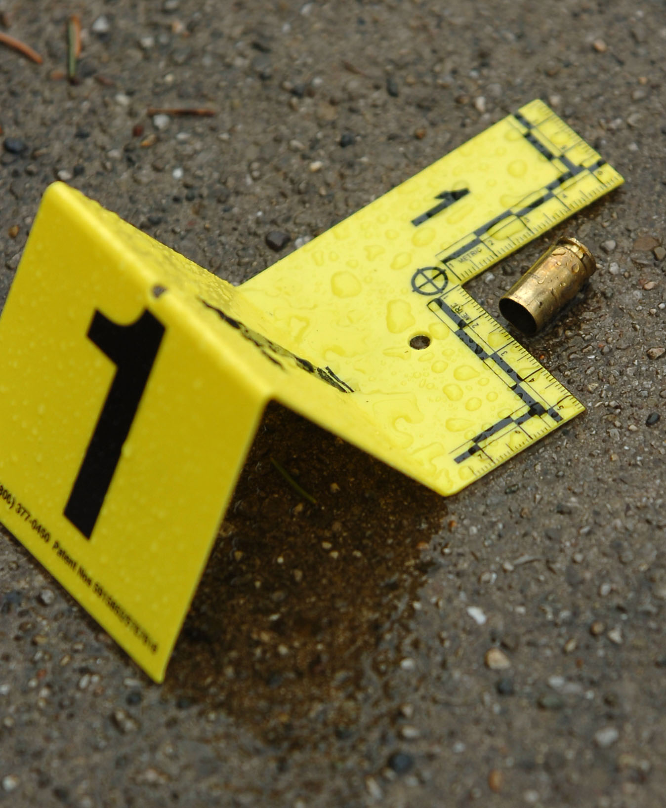 A man was shot to death May 31, 2020, in the 900 block of East 93rd Street in Burnside.