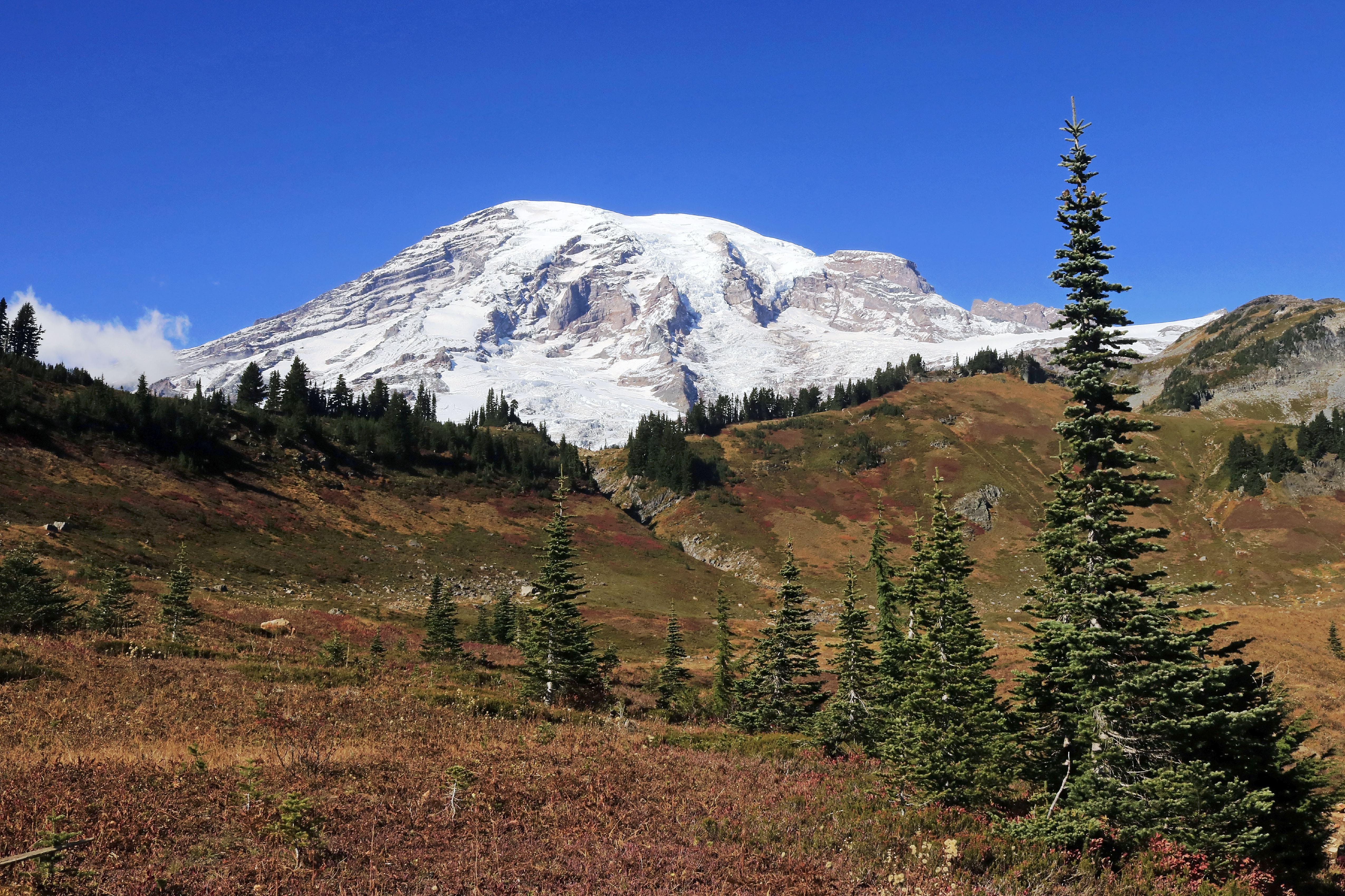 Clear autumn day view of Mount Rainier Washington