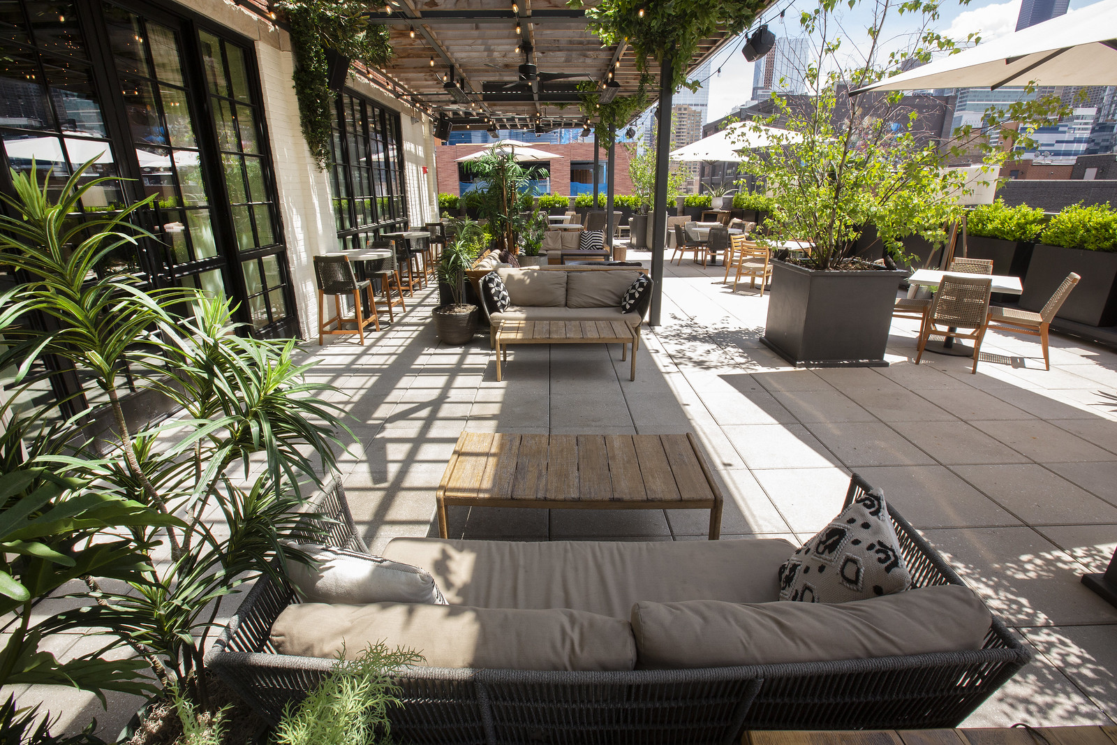 A patio with greenery.