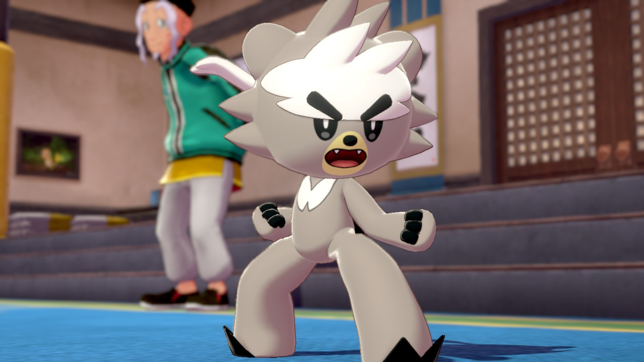 A Kubfu poses dramatically in the dojo
