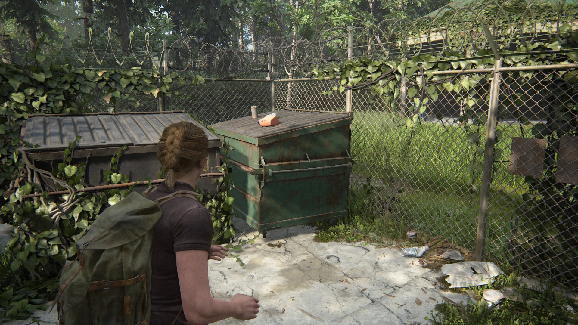 The Last of Us Part 2 guide: The Park collectibles