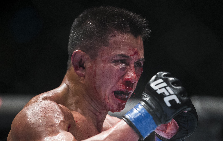 UFC Fight Night - Bisping v Le
