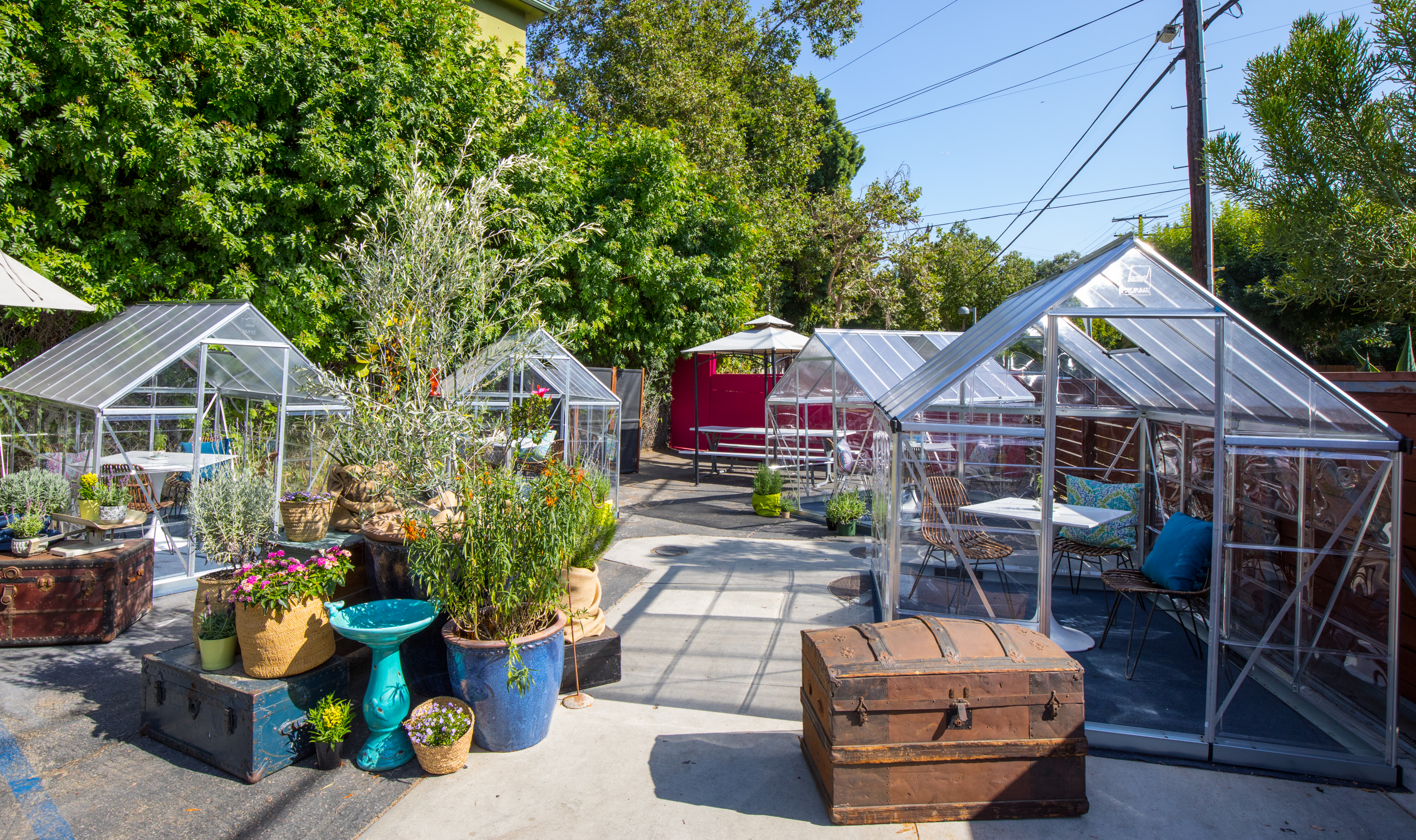 Greenhouse dining at Lady Byrd Cafe in Echo Park, California