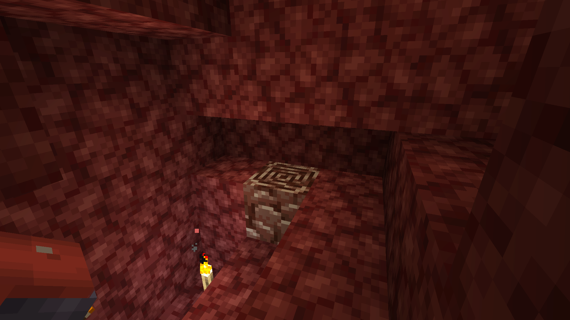 A Minecraft screenshot showing a swirly brown block surrounded by dark red blocks