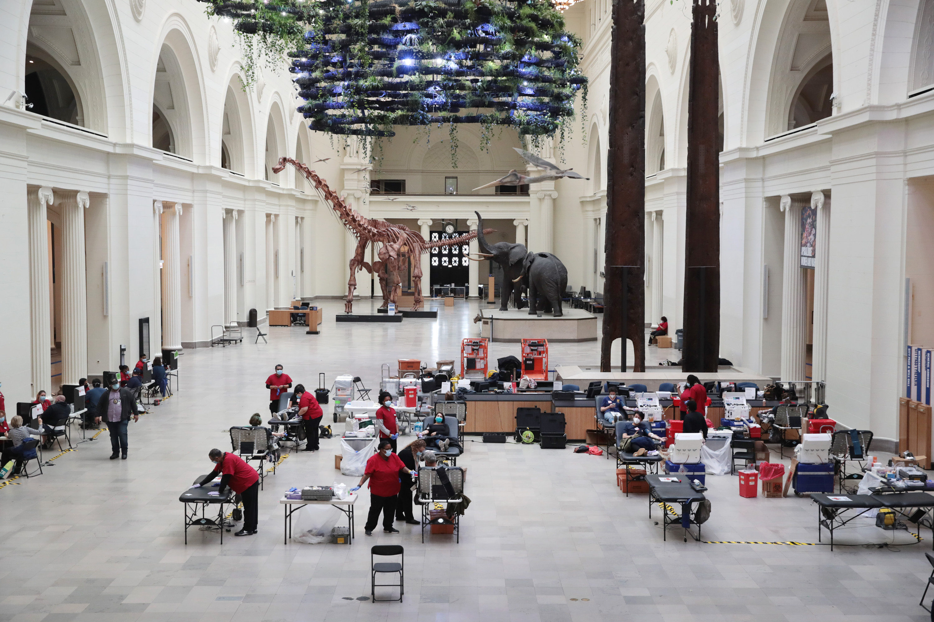 Chicago's Field Museum Of Natural History Hosts Blood Drive Amid COVID-19 Crisis
