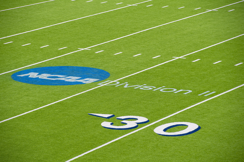 2019 NCAA Division II Football Championship