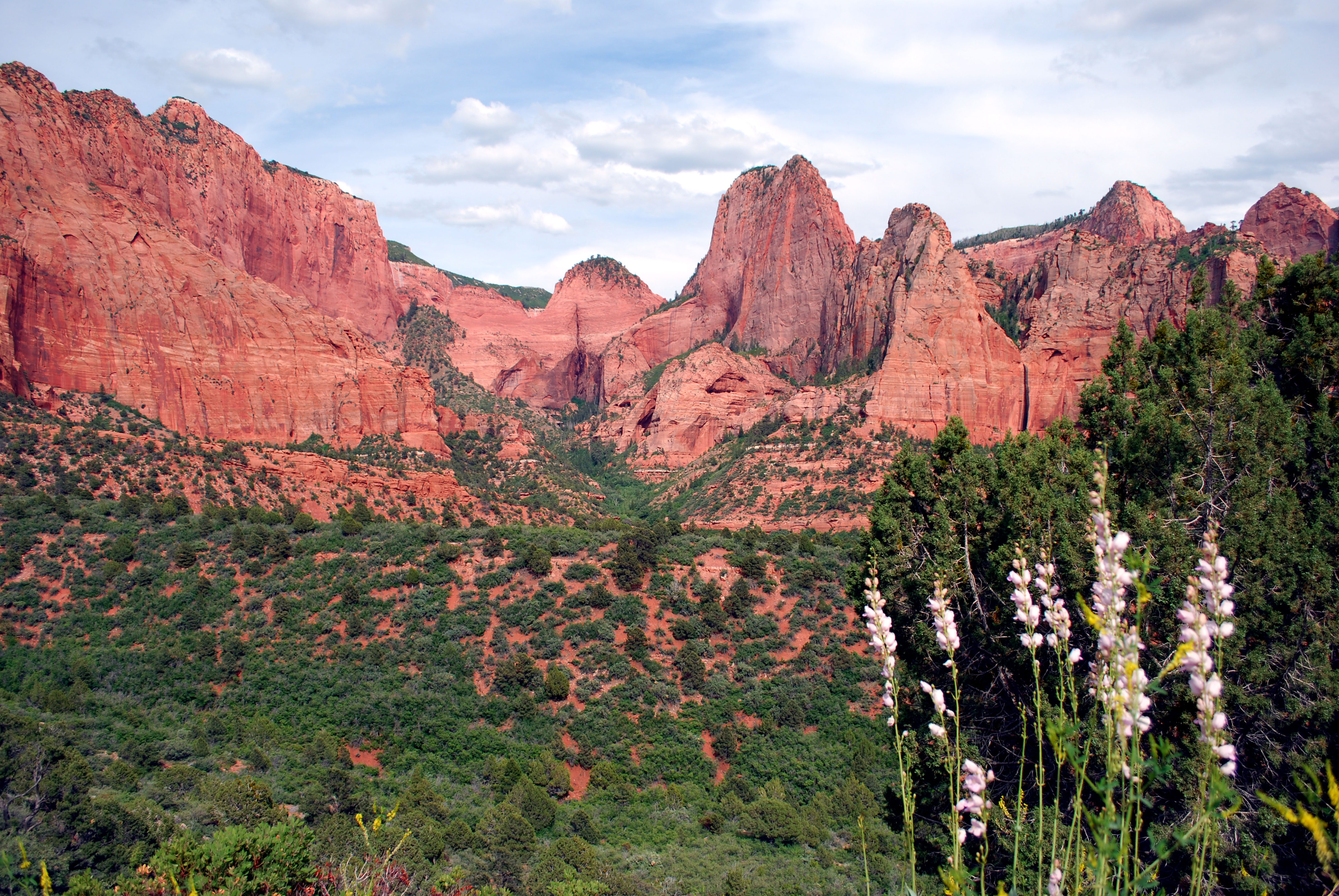 Just off I-15 south of Cedar City, the Kolob section of Zion National Park offers a lovely sidetrip into remarkable red sandstone canyons with towering cliffs and pinnacles. The district also has several hiking trails.
