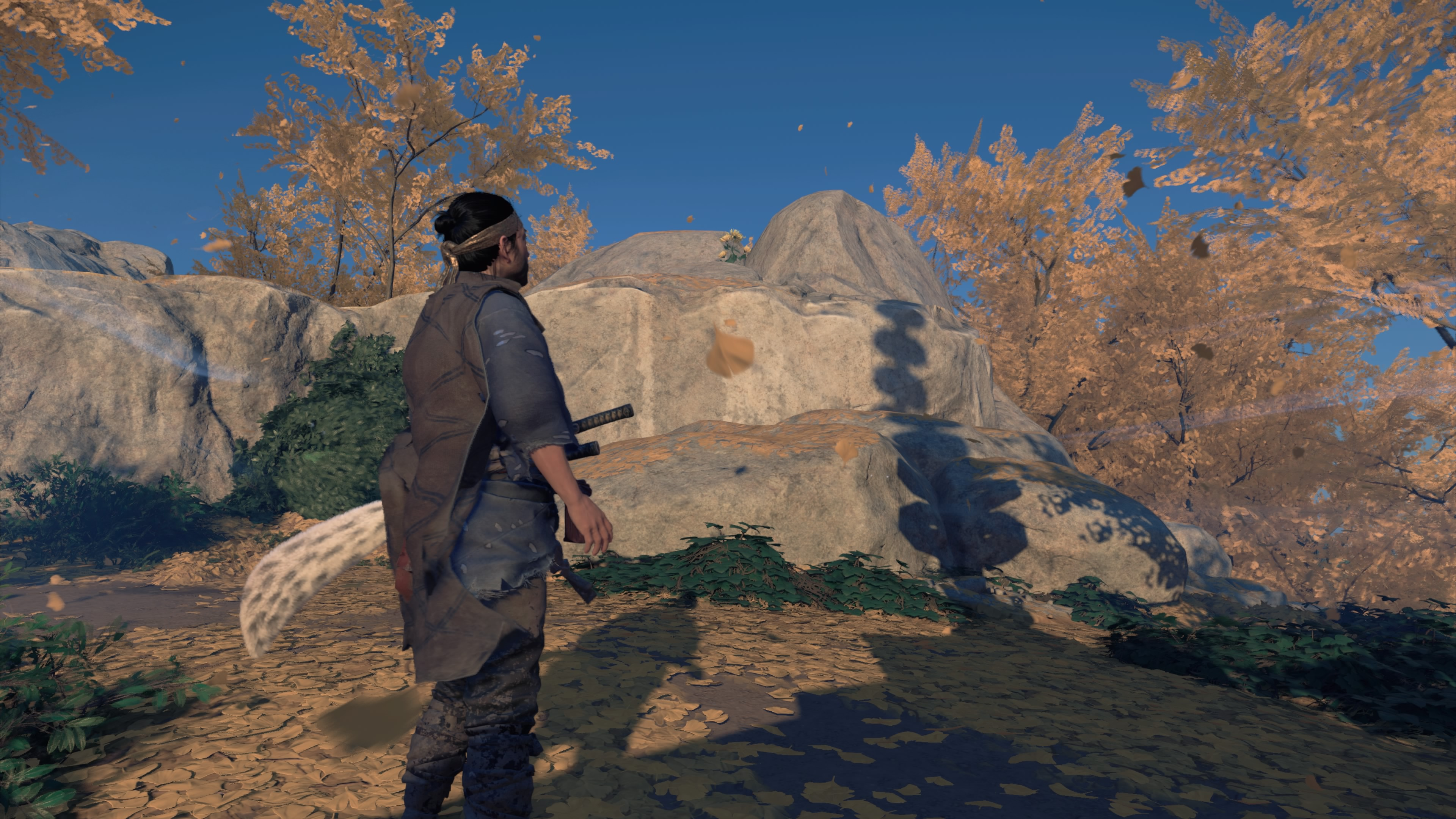 Ghost of Tsushima protagonist Jin Sakai stares at a flower on a rock
