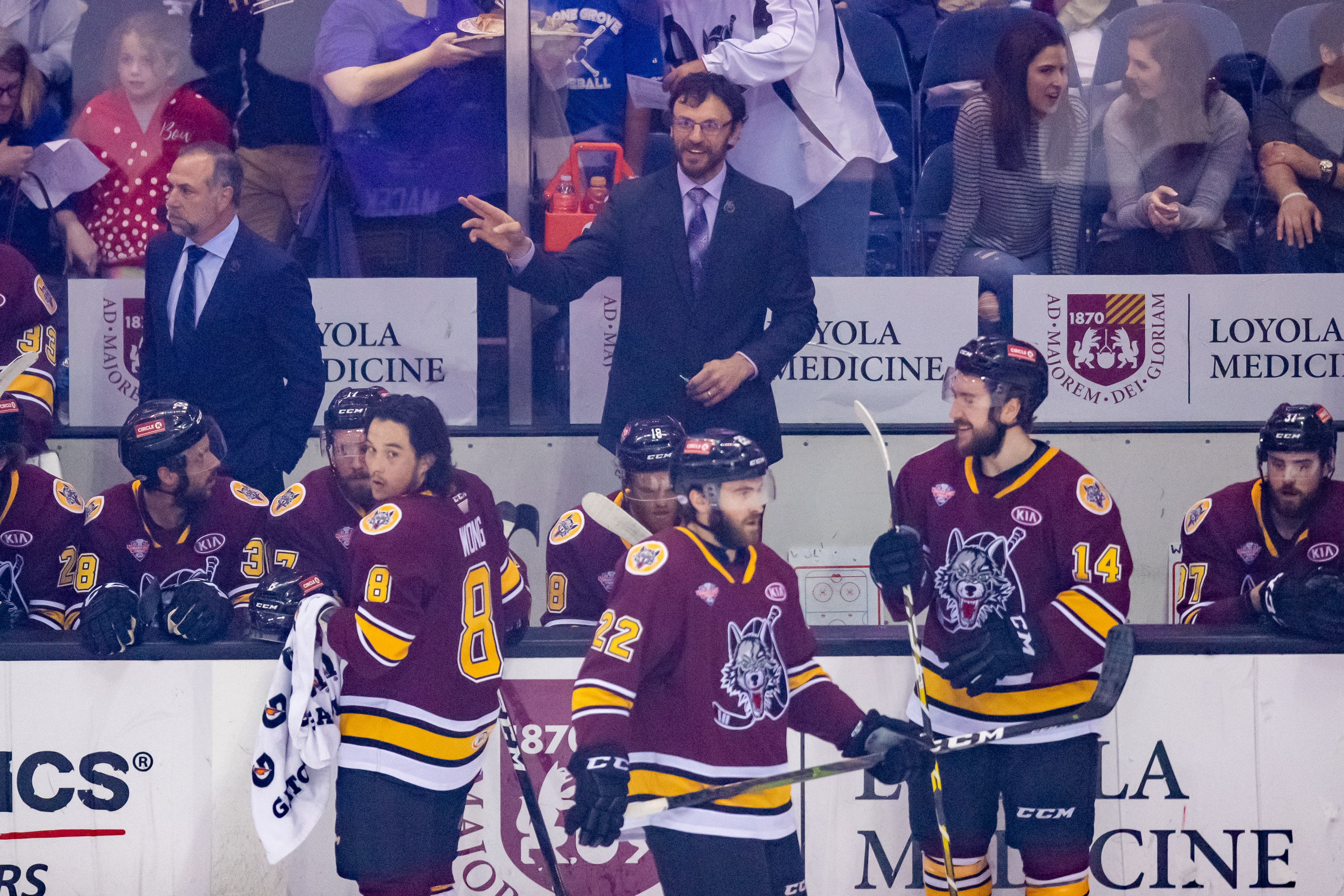 ROSEMONT, IL - JUNE 08: Chicago Wolves head coach Rocky Thompson during game five of the AHL Calder Cup Finals between the Charlotte Checkers and the Chicago Wolves on June 8, 2019, at the Allstate Arena in Rosemont, IL.