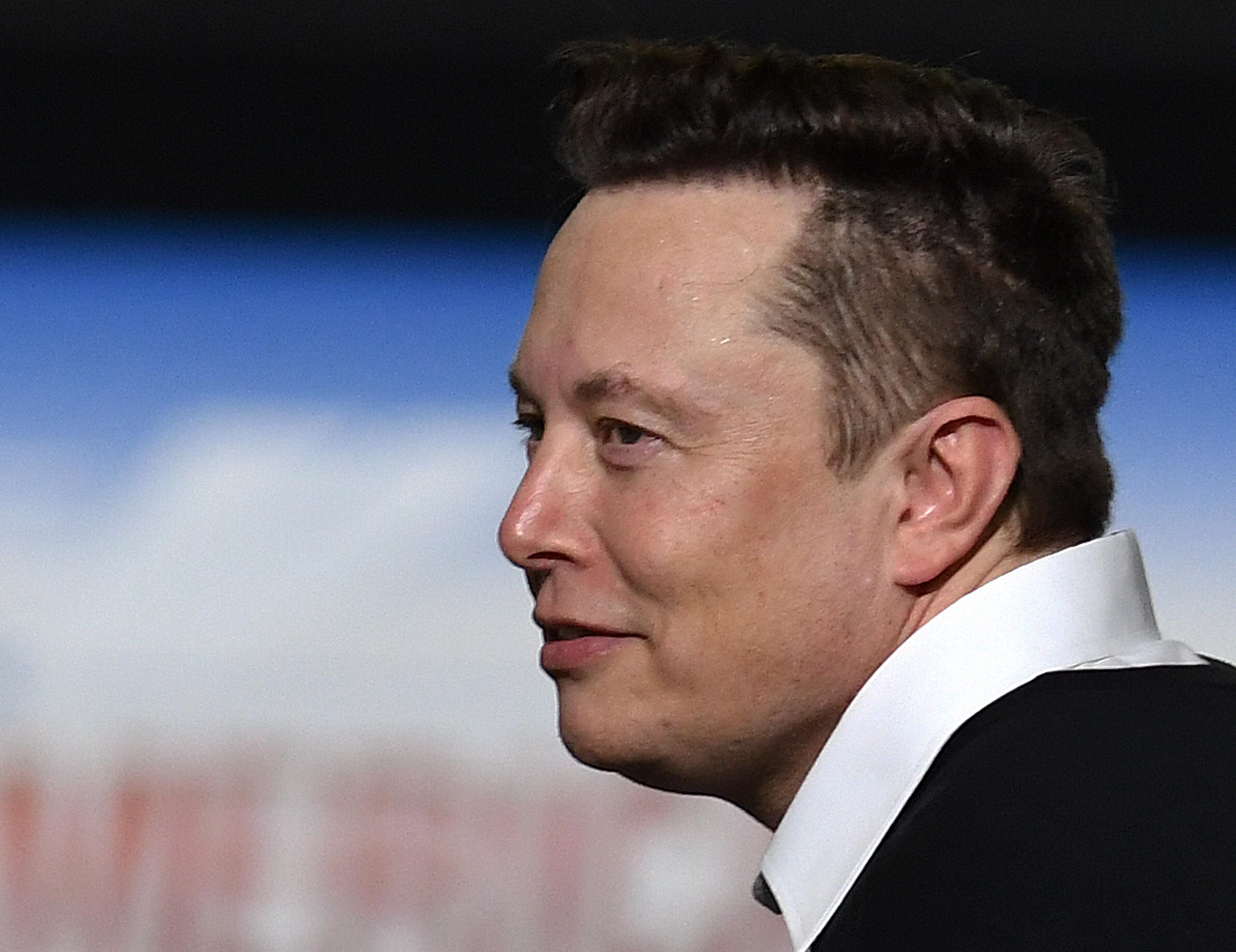 Elon Musk in profile.