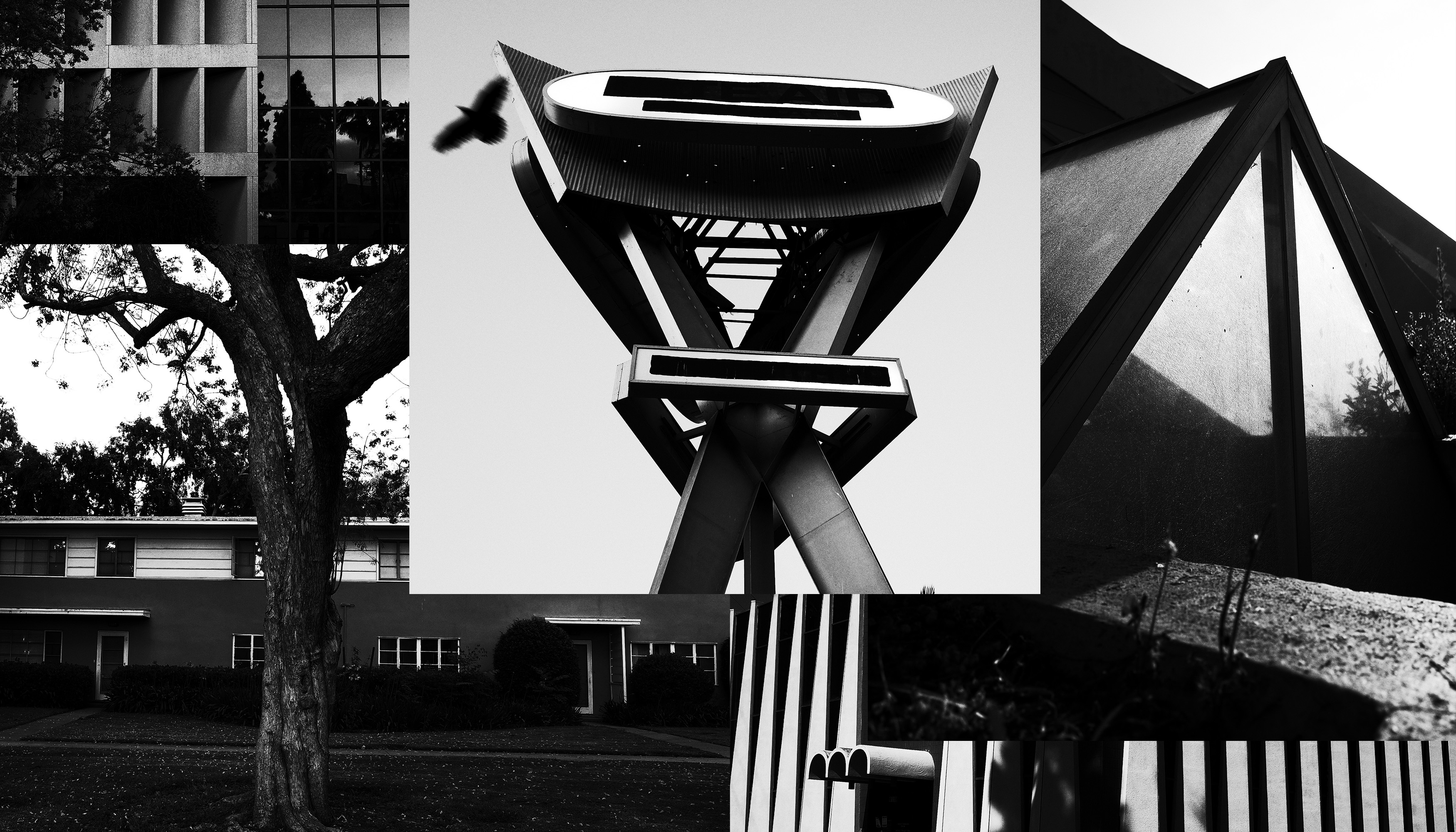 A collage of black-and-white photos of midcentury buildings and signs in south L.A.