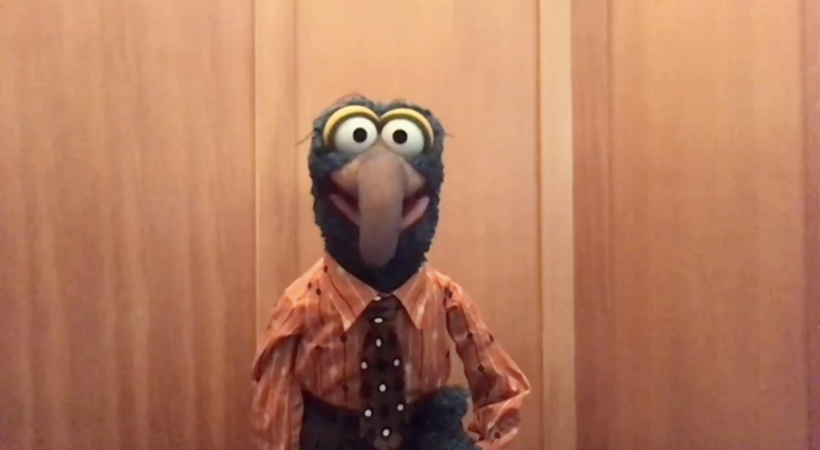 Gonzo, the muppet
