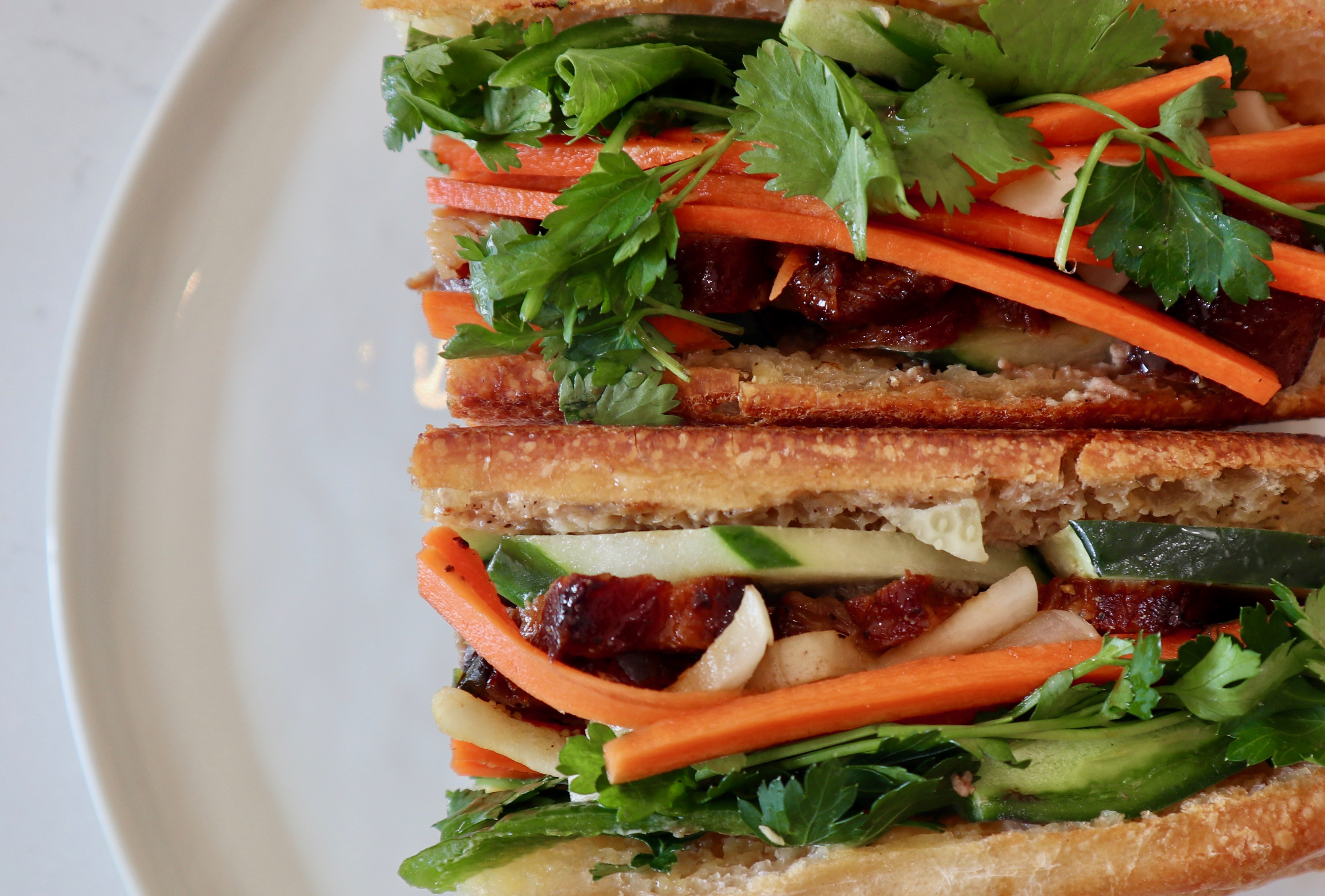 overhead shot of banh mi sandwich, close up on right side of a white plate .topped with shredded carrots, cilantro, and onions.