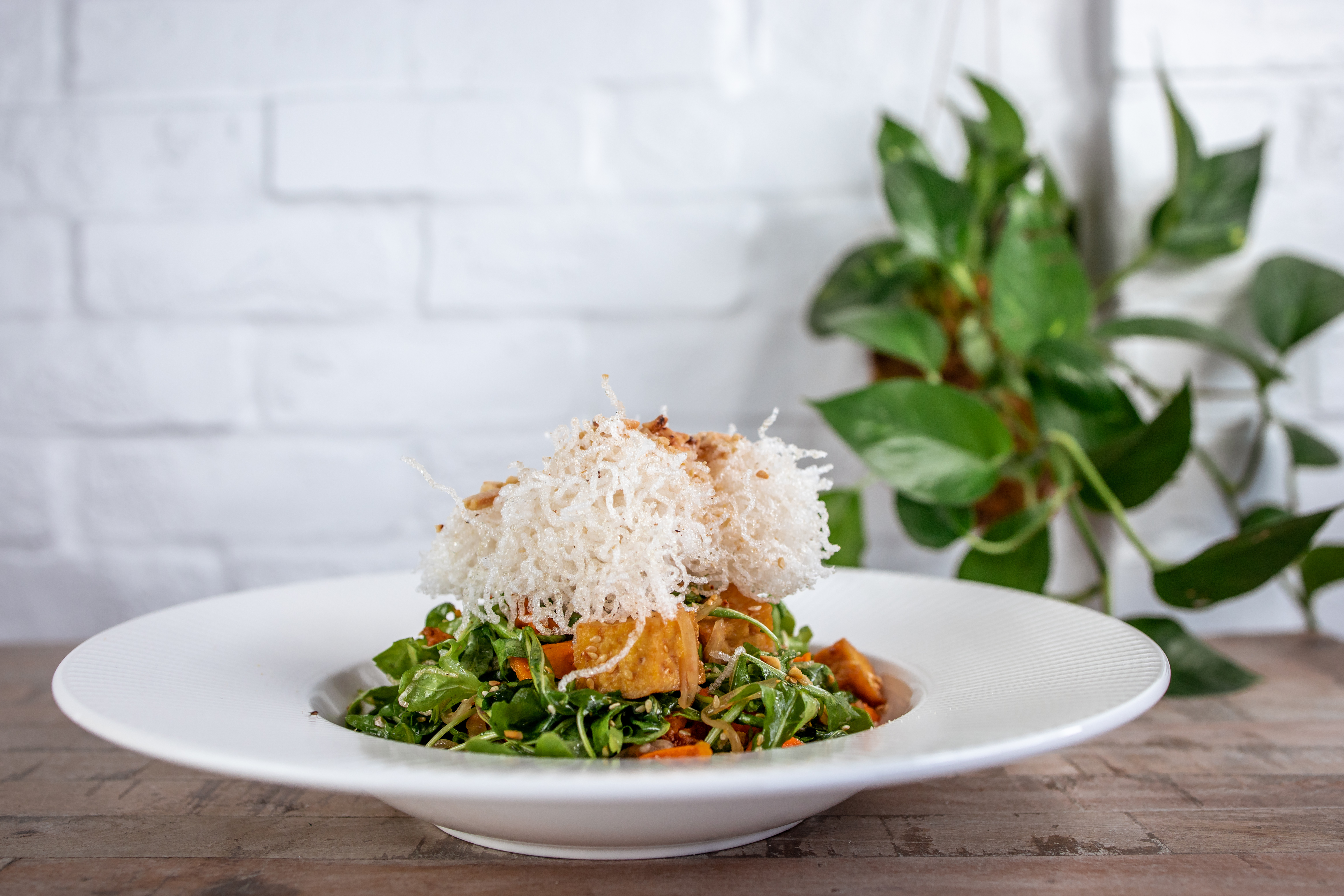 A white plate sits on a table in front of a white brick wall with a plant in the background. On the plate is a tall layered salad with greens on the bottom, tofu in the middle, and crispy white noodles on top.