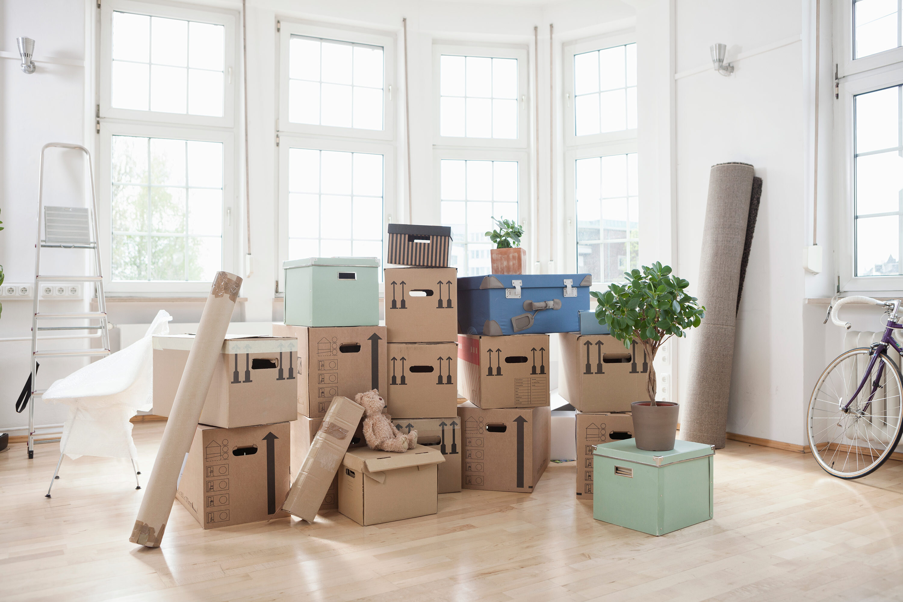 An image of packing boxes in a bright-lit apartment. The image is meant to illustrate the point that New Yorkers aren't fleeing the city for the suburbs.