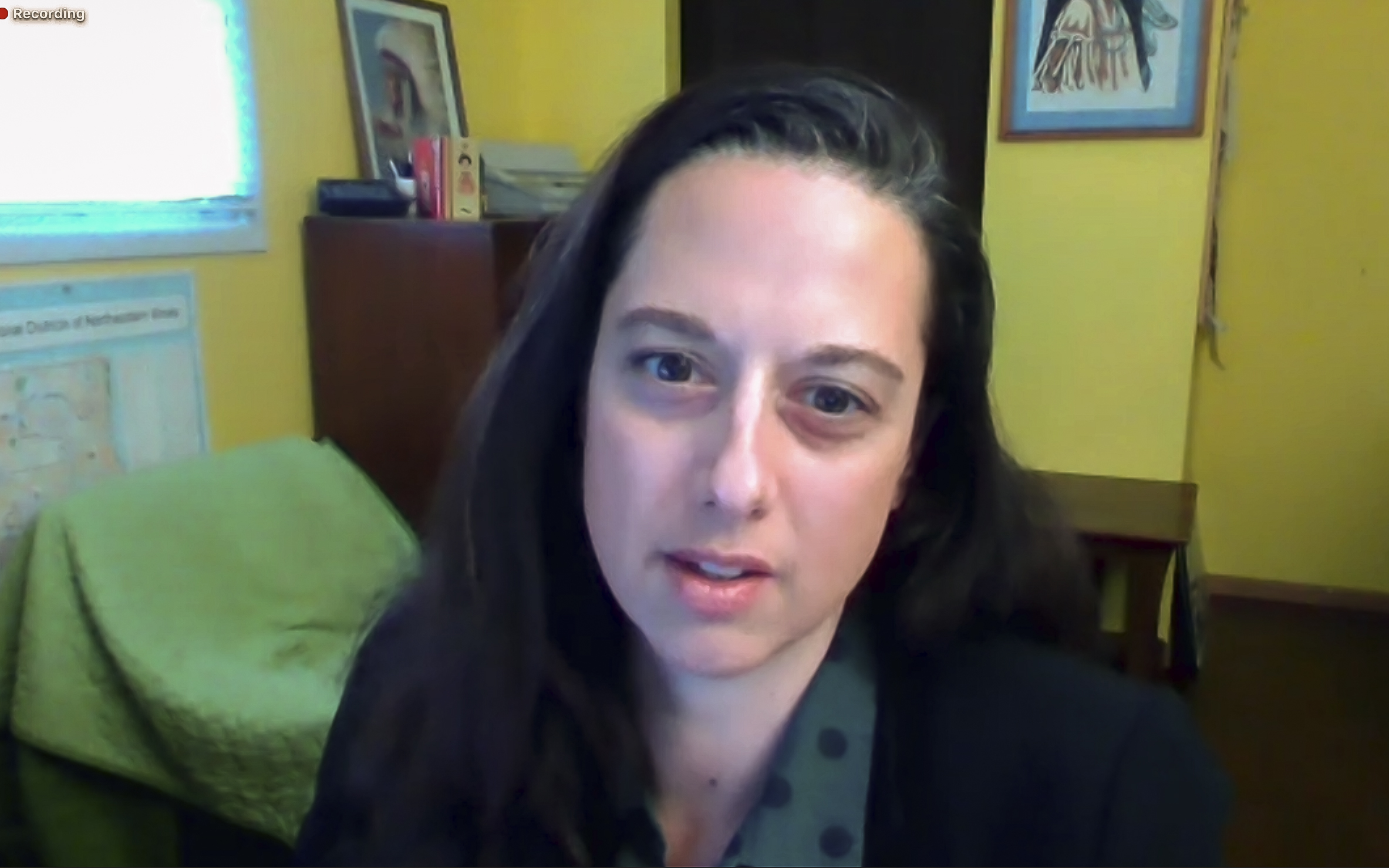 Anna Schiefelbein, Illinois House 85th District Green Party nominee, 2020 election candidate questionnaire