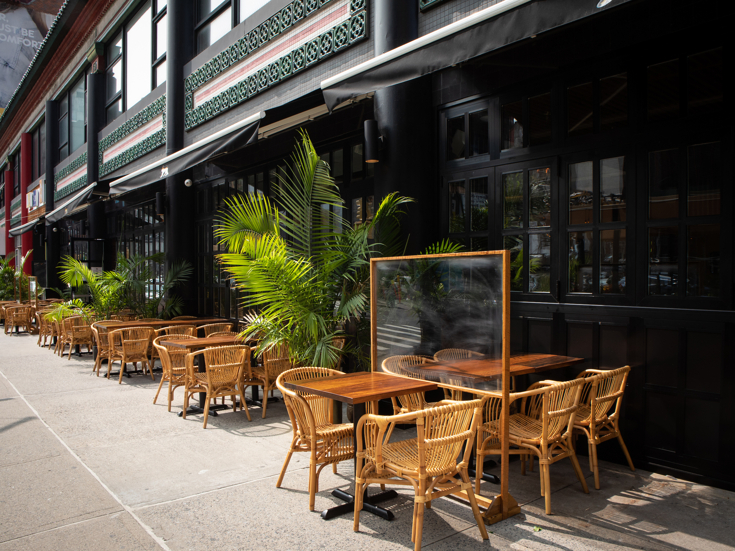 Light wicker chairs and wooden tables with green palm plants in between set up on the sidewalk alongside the exterior of the restaurant