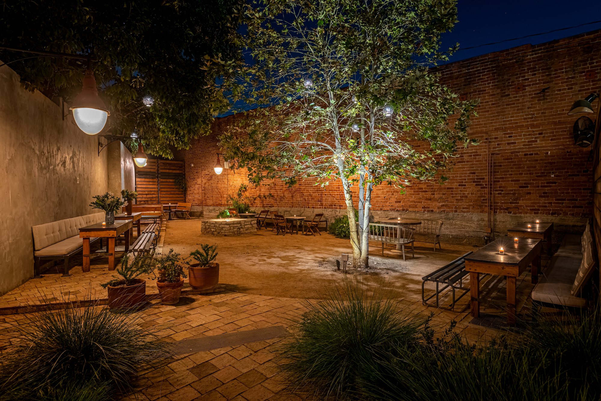 A dim dark evening patio behind a bar with lots of uplighting into the trees.