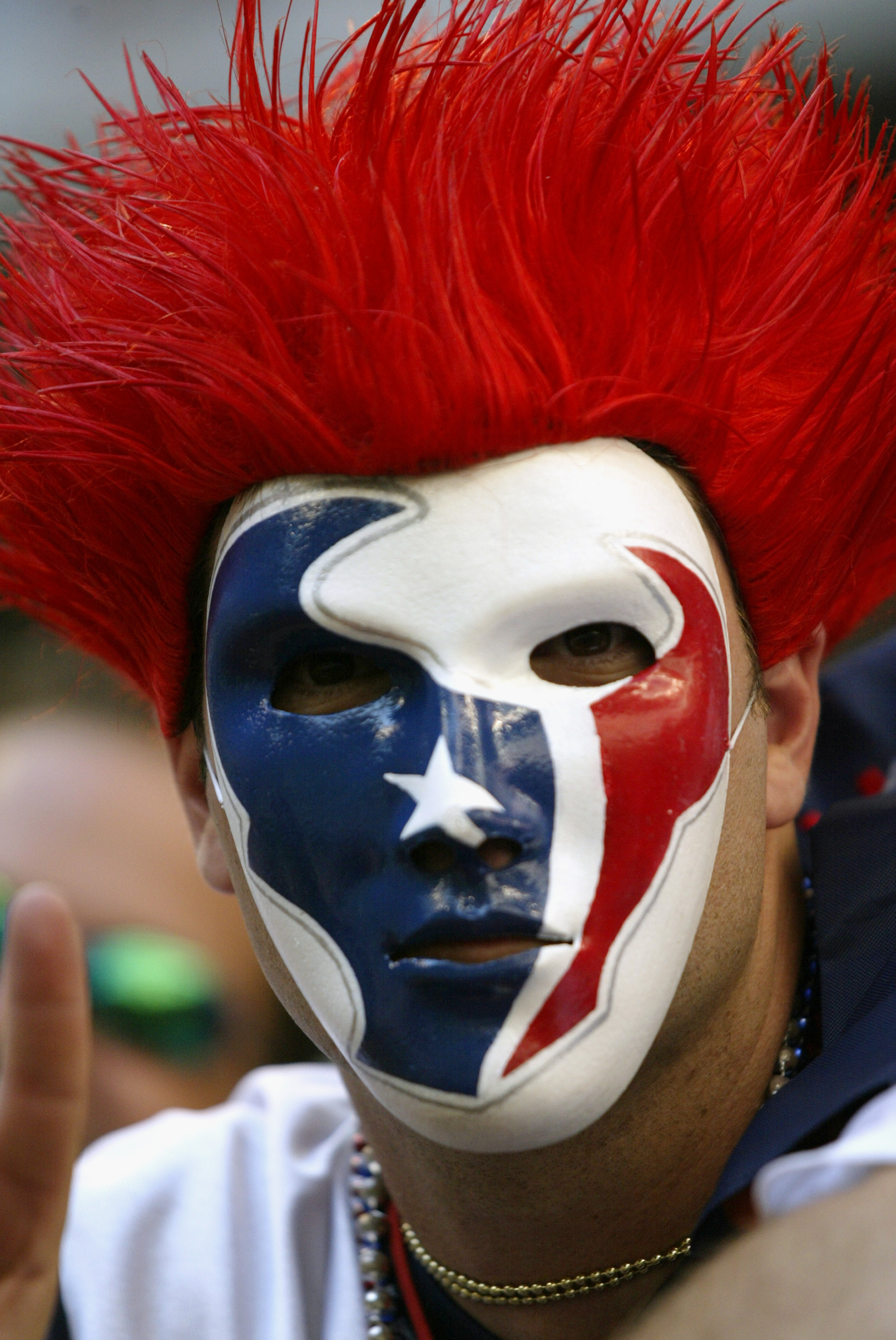A fan of Houston Texans show support