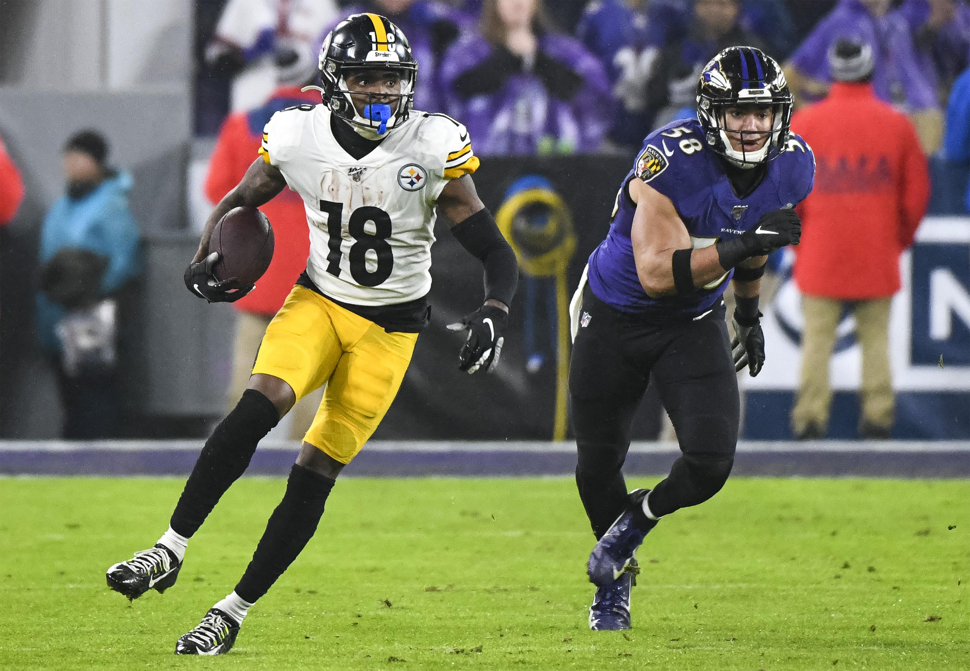 NFL: DEC 29 Steelers at Ravens