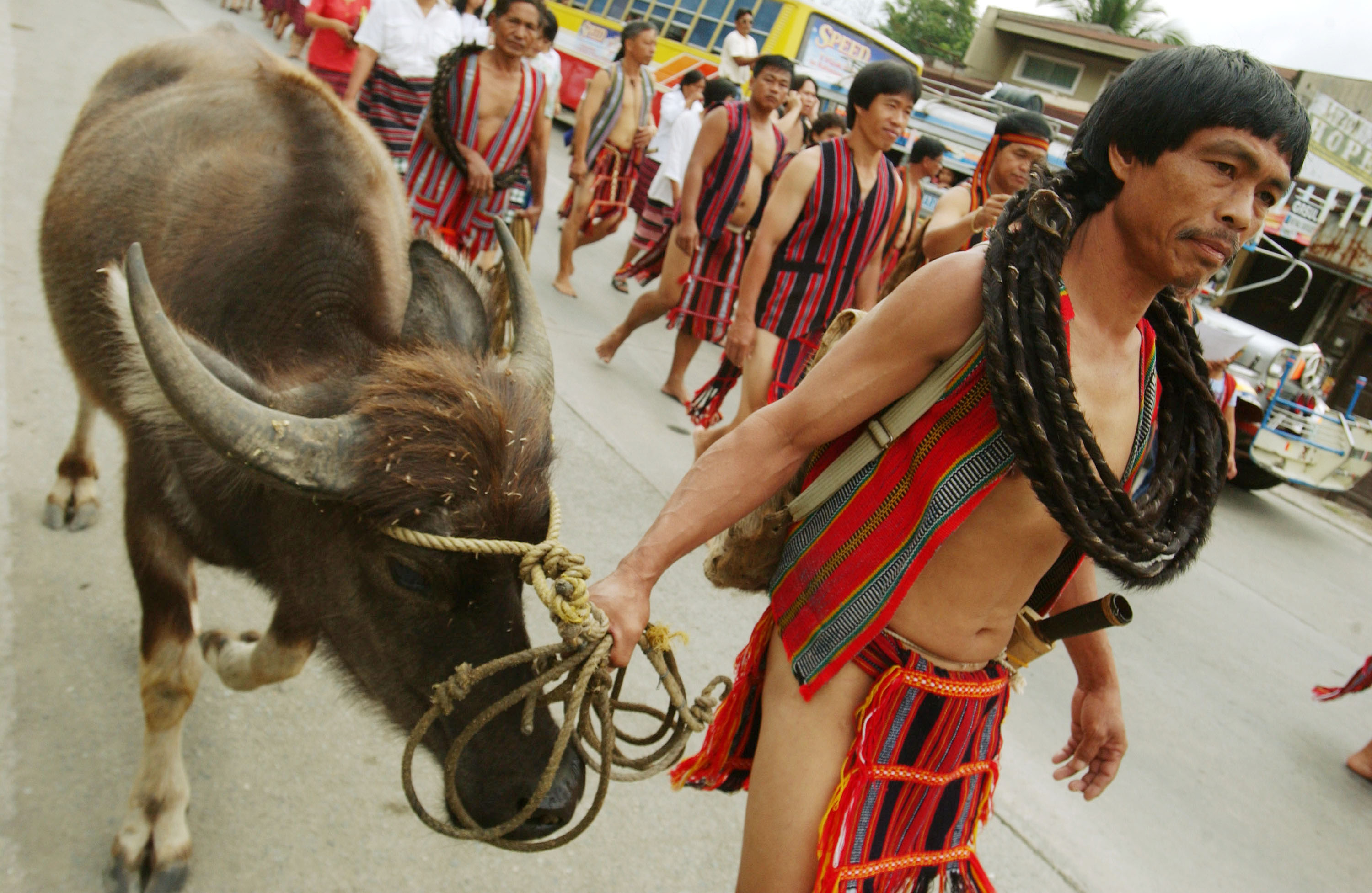 Kalanguya Tribesmen Celebrate Annual Festival In The Philippines