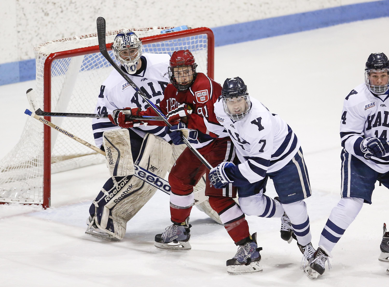 Photo Gallery: Harvard Crimson vs. Yale Bulldogs