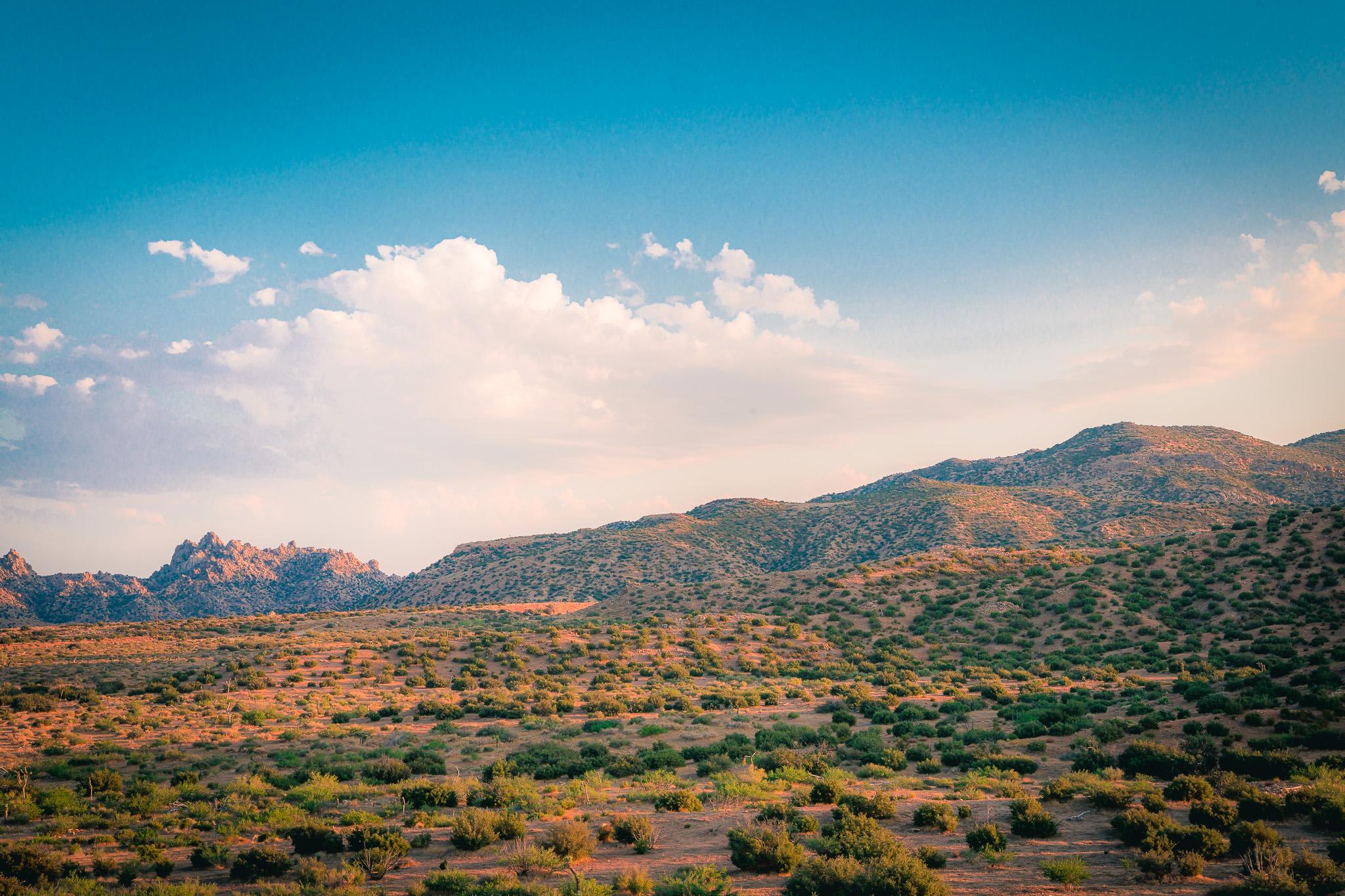 A sprawling, slightly sloping desert hillside in daytime.