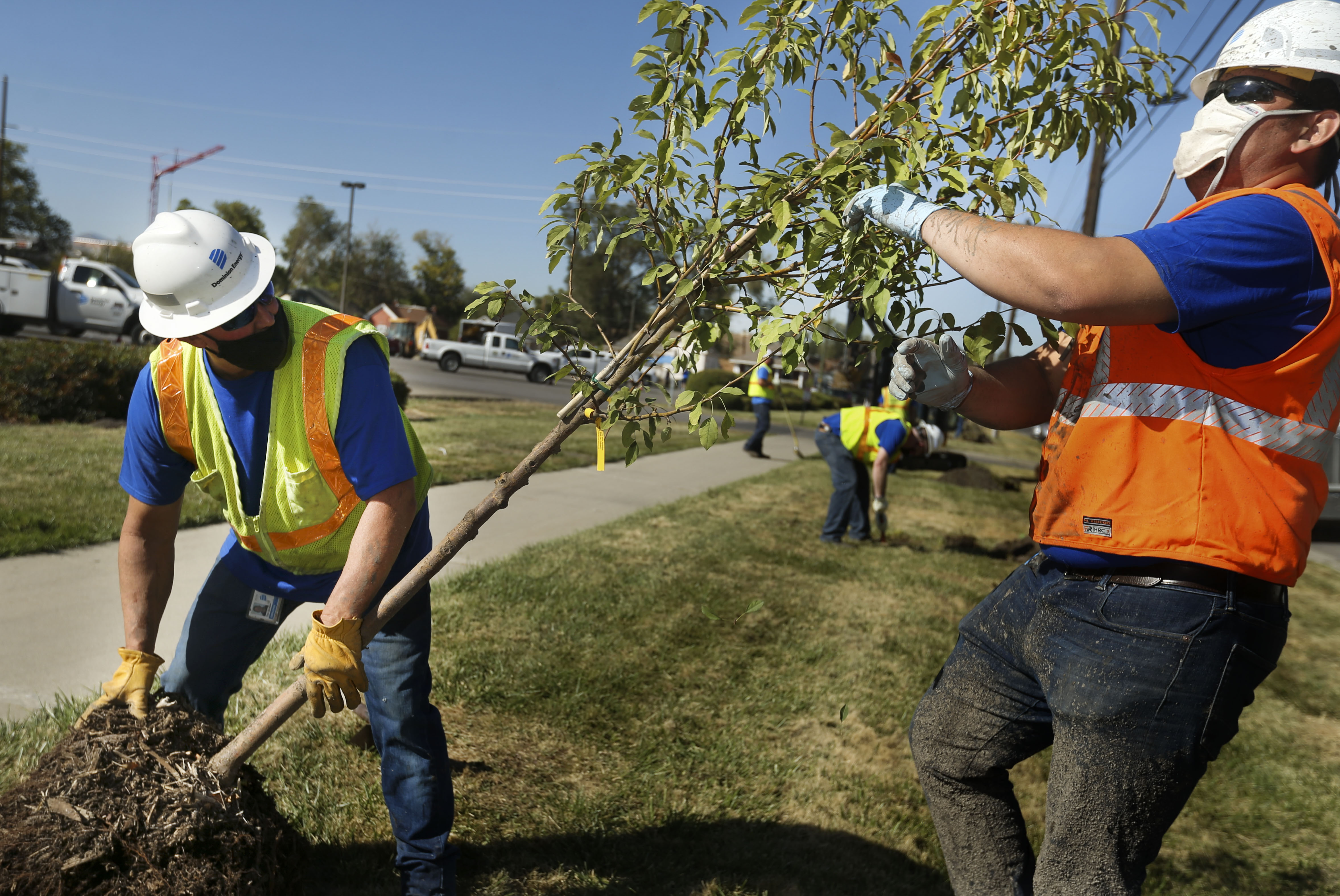 Tom Dickson and Joel Chavez, of Dominion Energy, plant a tree on 200 North in the Fairpark neighborhood of Salt Lake City on Thursday, Oct. 1, 2020.