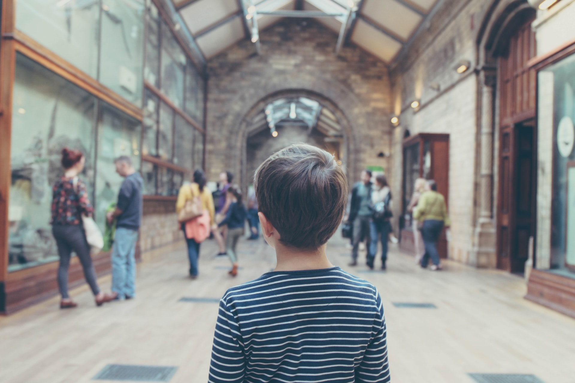 Back of a young boy looking at a museum exhibit.