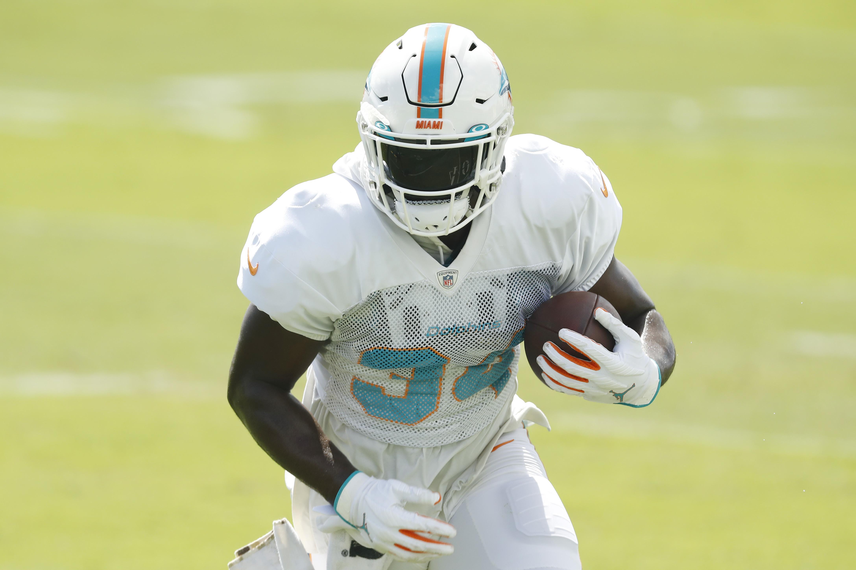 Miami Dolphins Training Camp