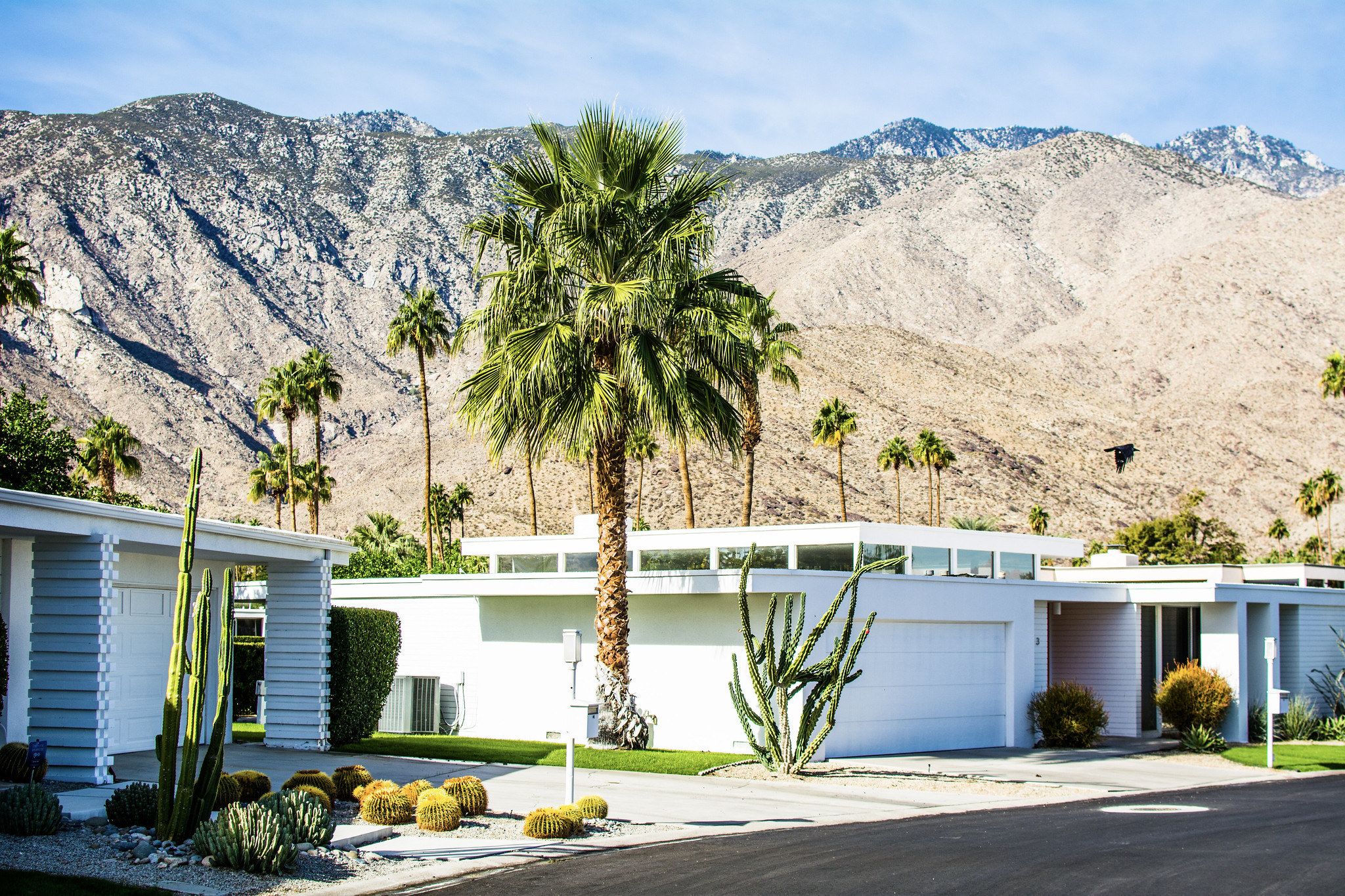A midcentury modern home under the dusty hills of Palm Springs.