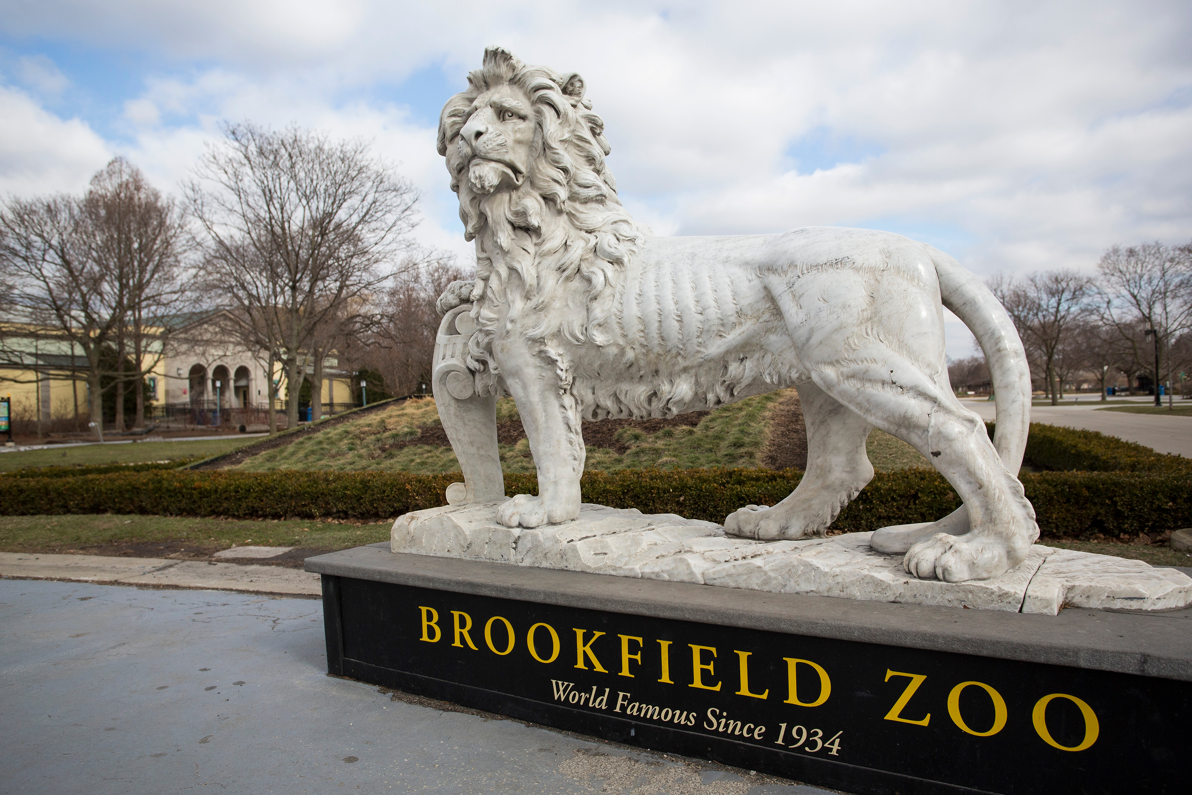 Brookfield Zoo is set to temporarily close Jan. 1 due to the pandemic.