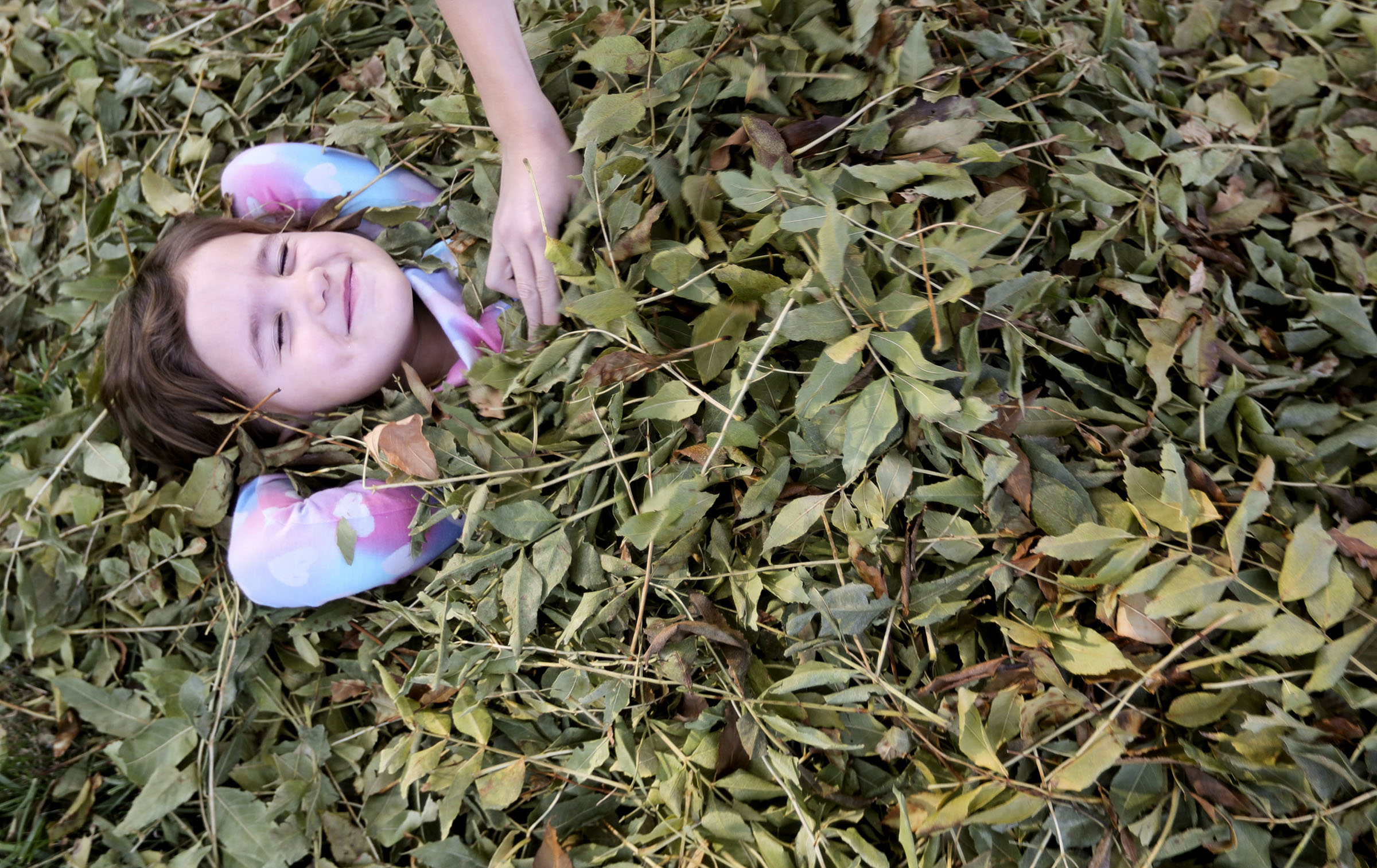 Cordelia Rogers gets buried in a pile of leaves in her front yard in South Salt Lake on Thursday, Oct. 29, 2020.
