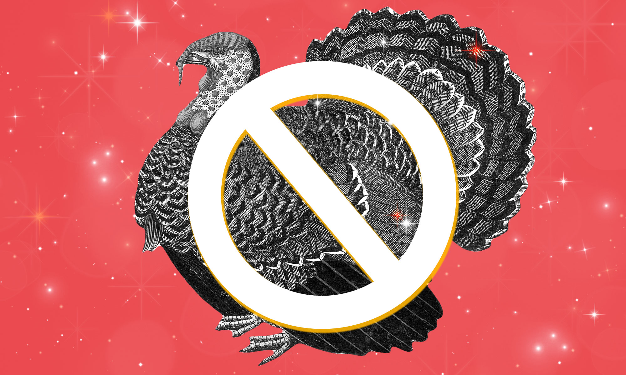 Illustrated image of a turkey with a crossed-out circle on top of it.