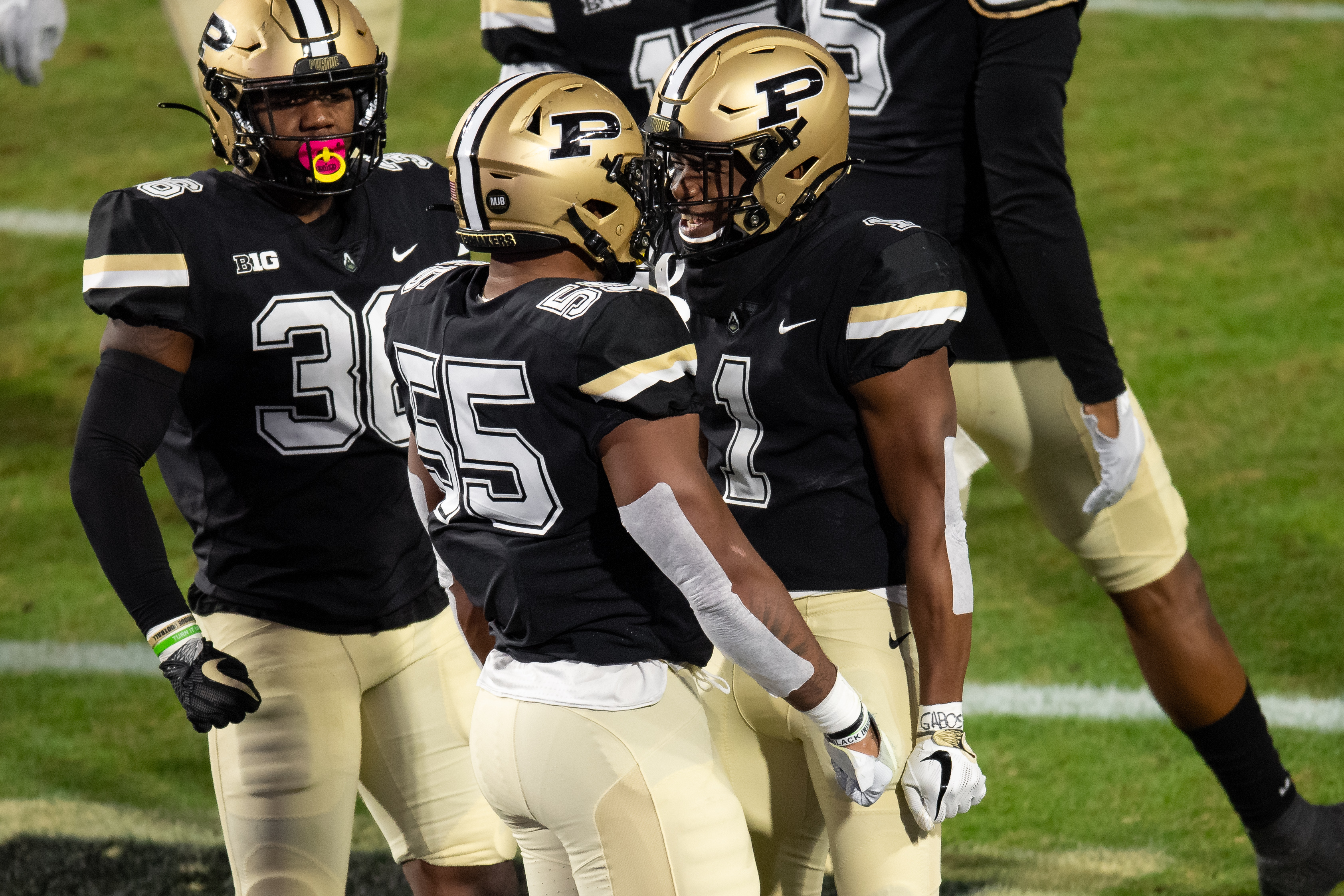 COLLEGE FOOTBALL: NOV 14 Northwestern at Purdue