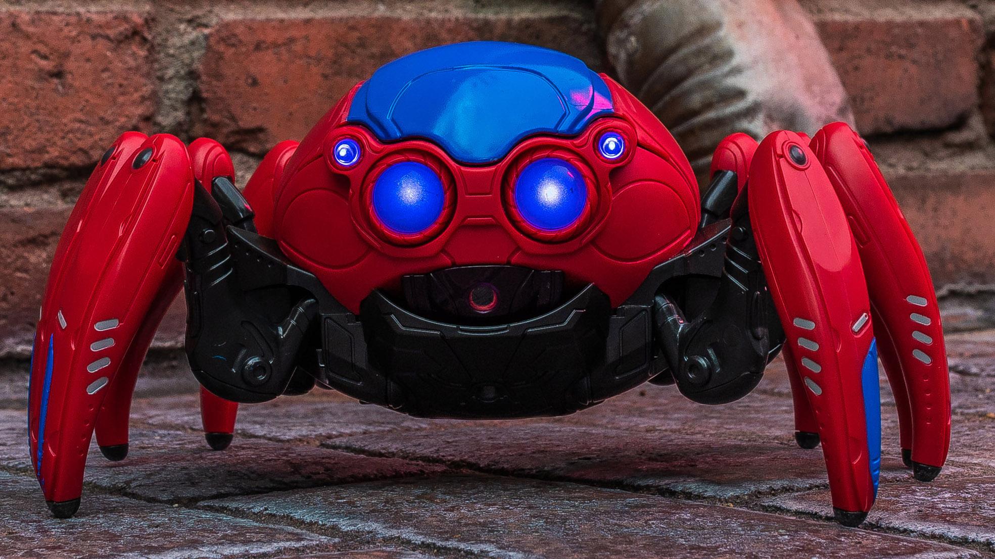 a spider bot