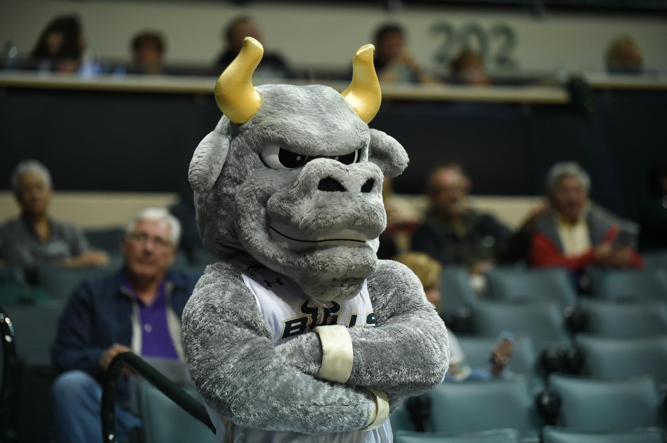 NCAA BASKETBALL: FEB 17 Houston at USF