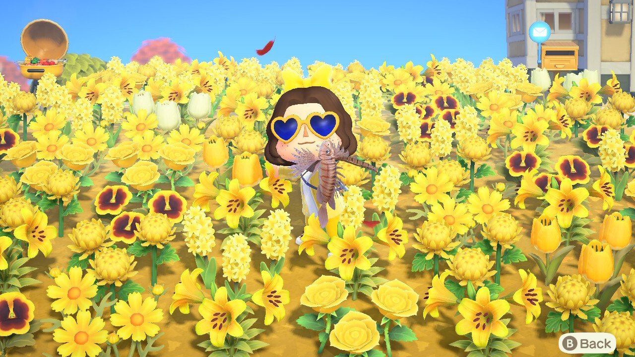An Animal Crossing character holds up a fish in a field of yellow flowers