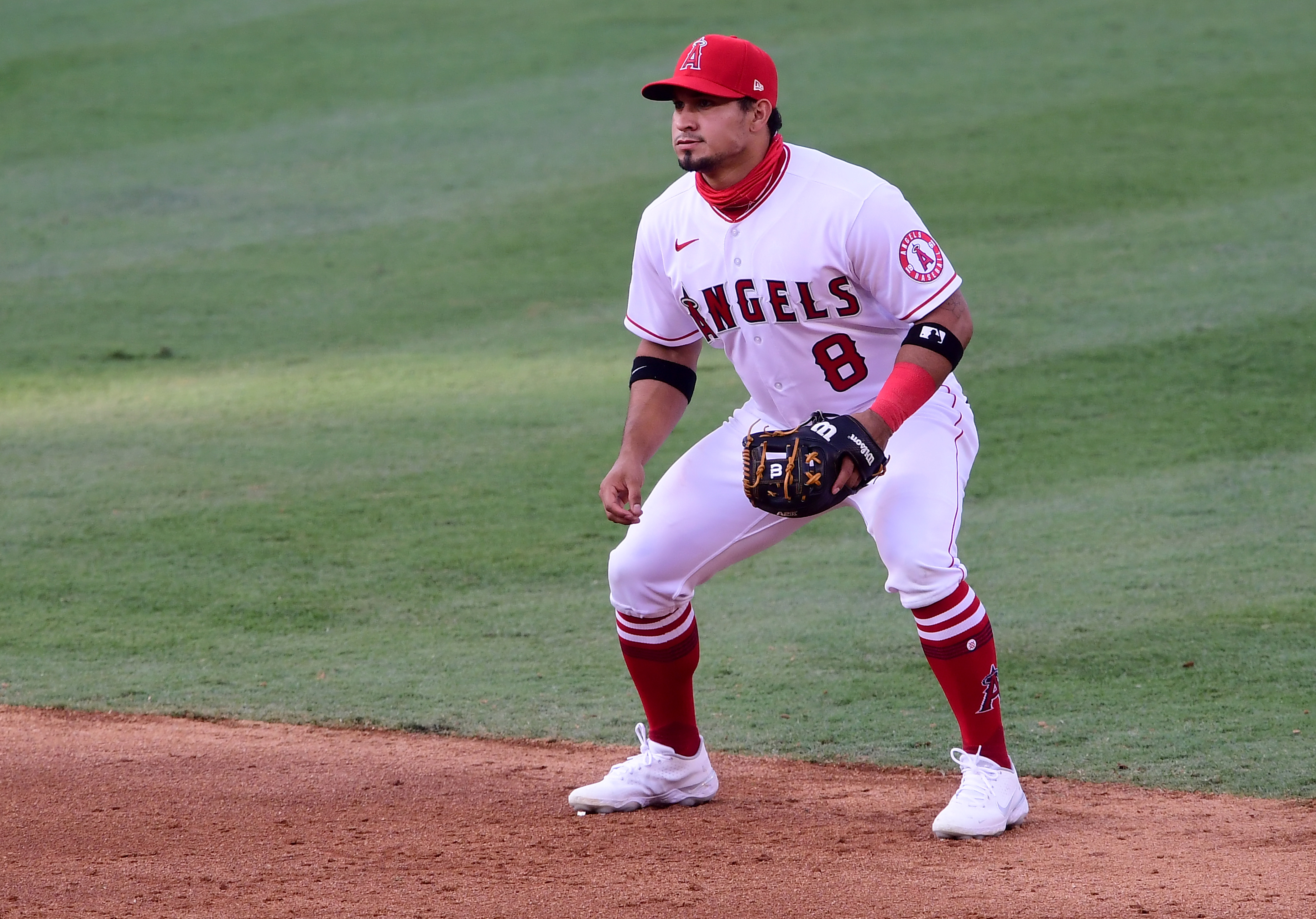 San Diego Padres v Los Angeles Angels