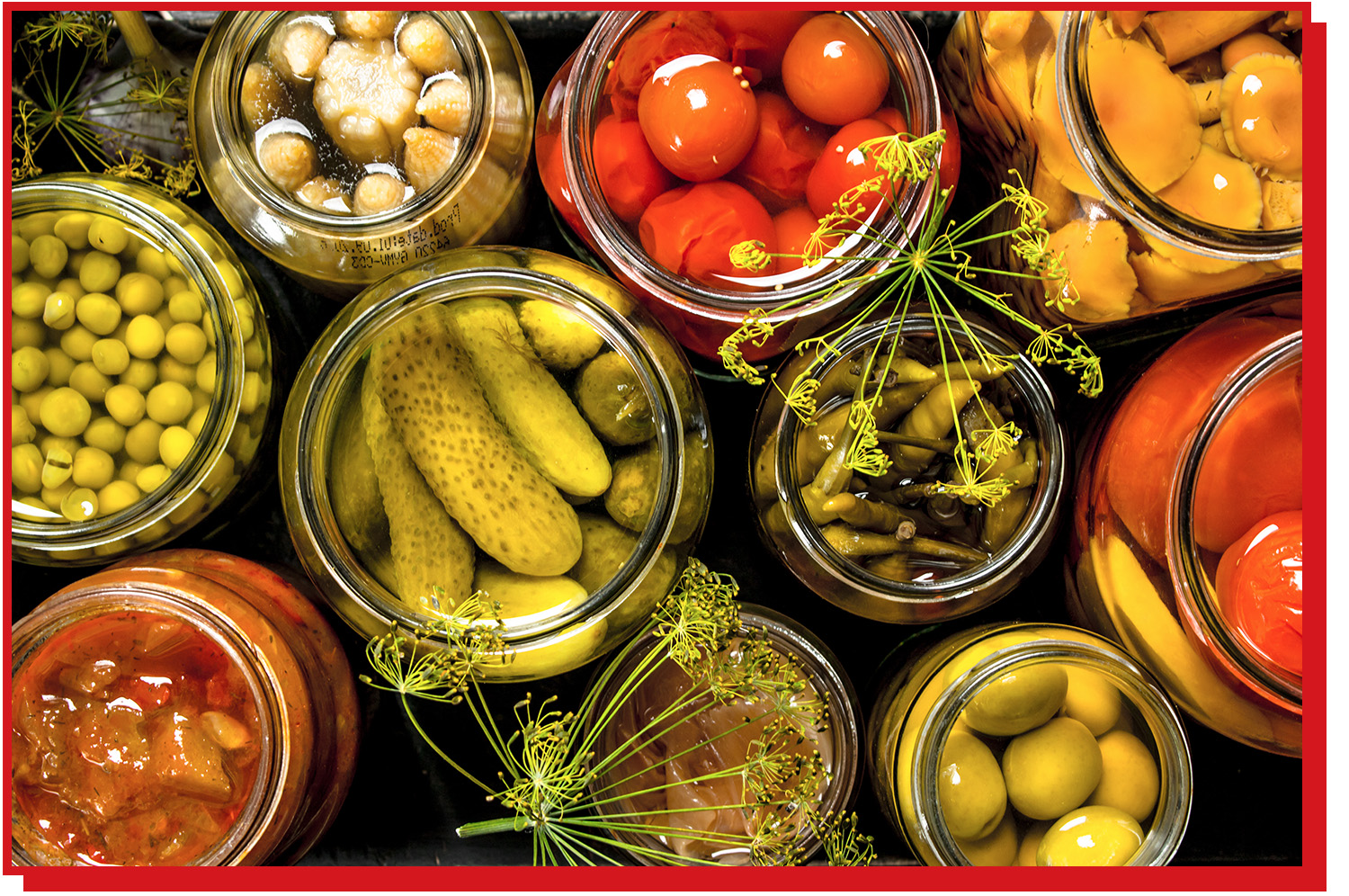 Assorted pickled vegetables in glass jars, as seen from above.
