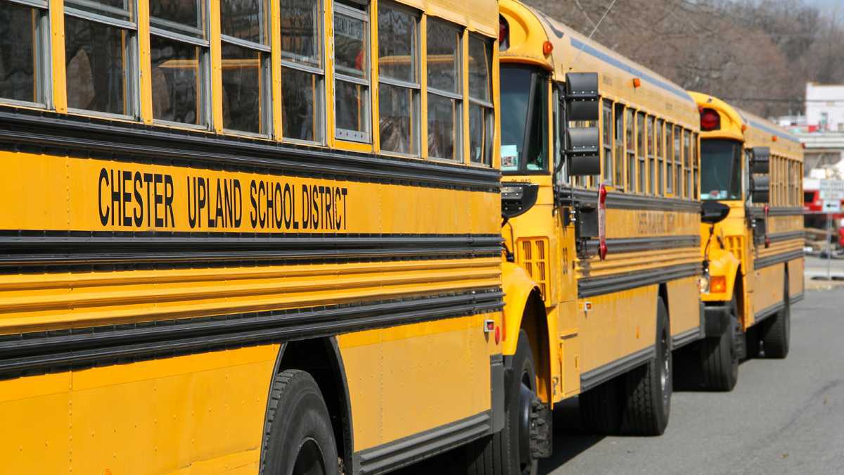Yellow school buses for the Chester Upland School District.