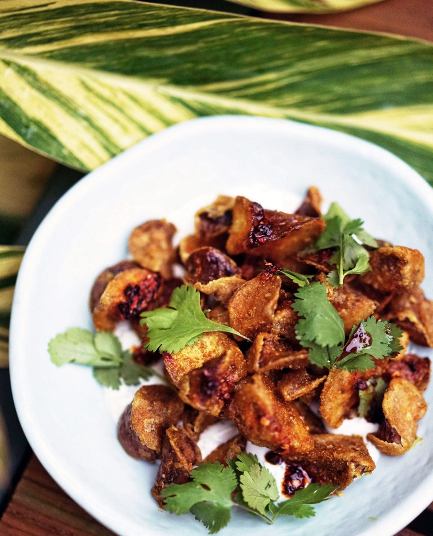 a white plate with bits of fried eggplant topped with cilantro