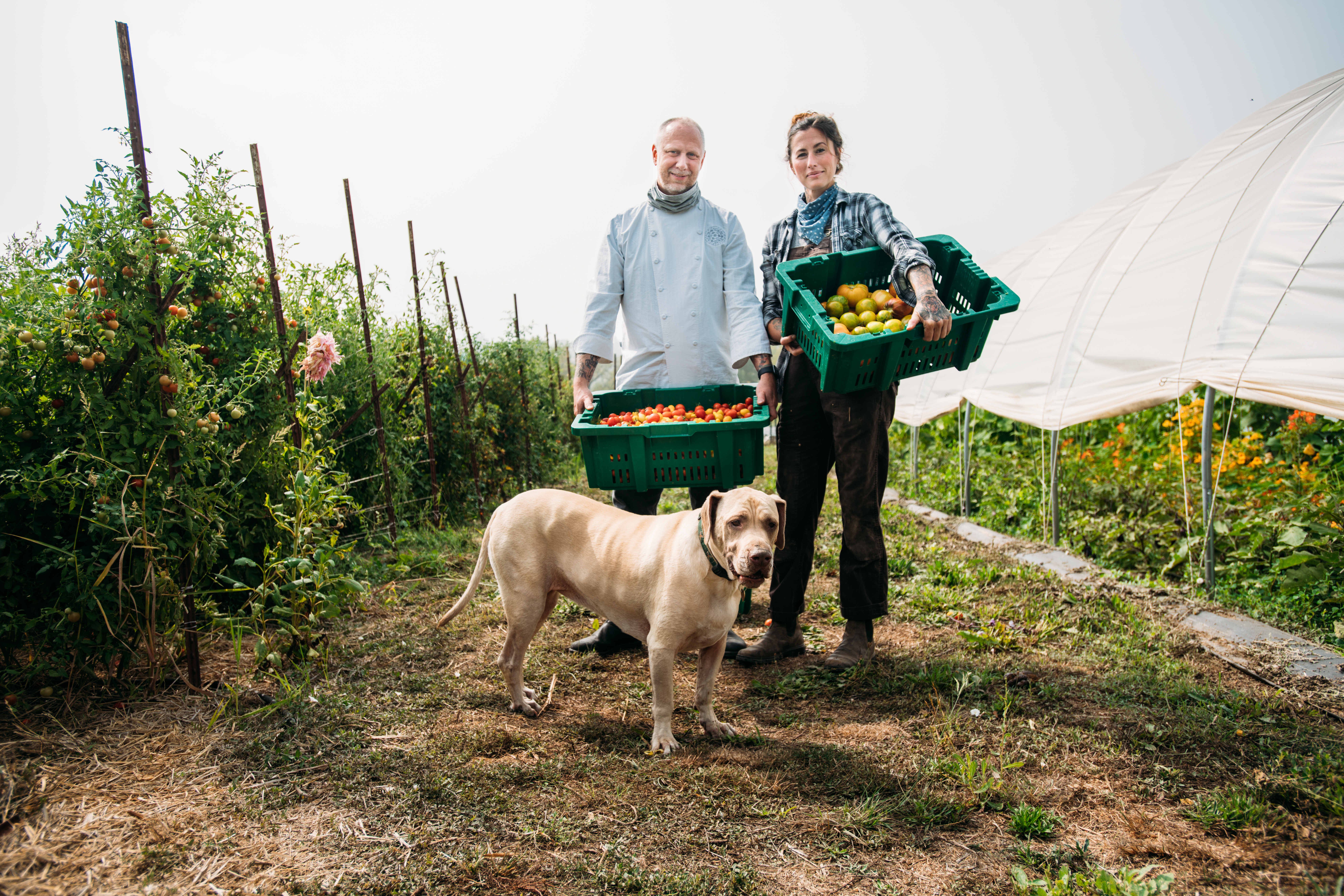Kyle and Katina Connaughton stand with their dog in a field at SingleThread Farm. Both hold baskets of tomatoes; Kyle wears his chef's coat and Katina wears overalls.