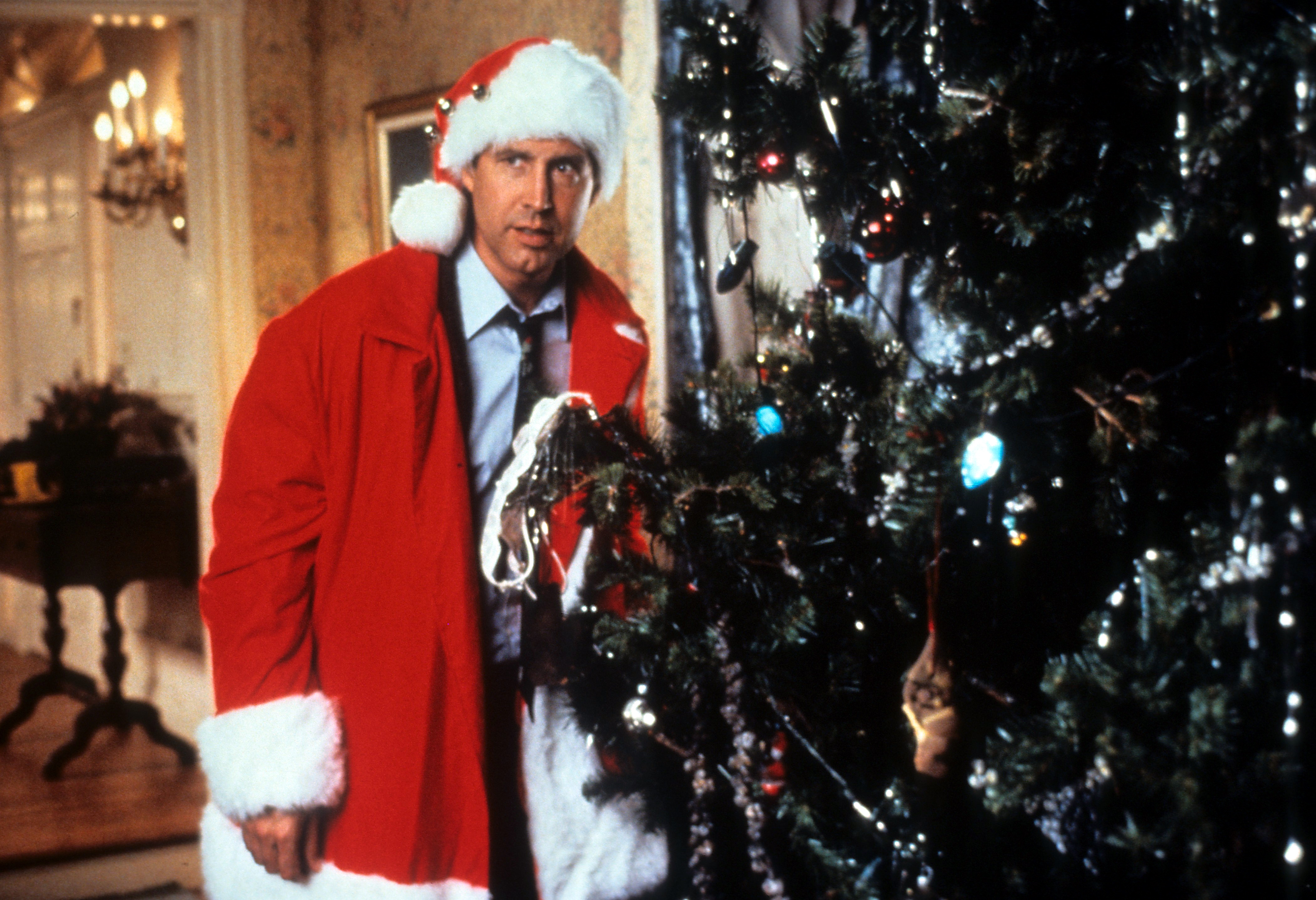 Chevy Chase In 'Christmas Vacation'
