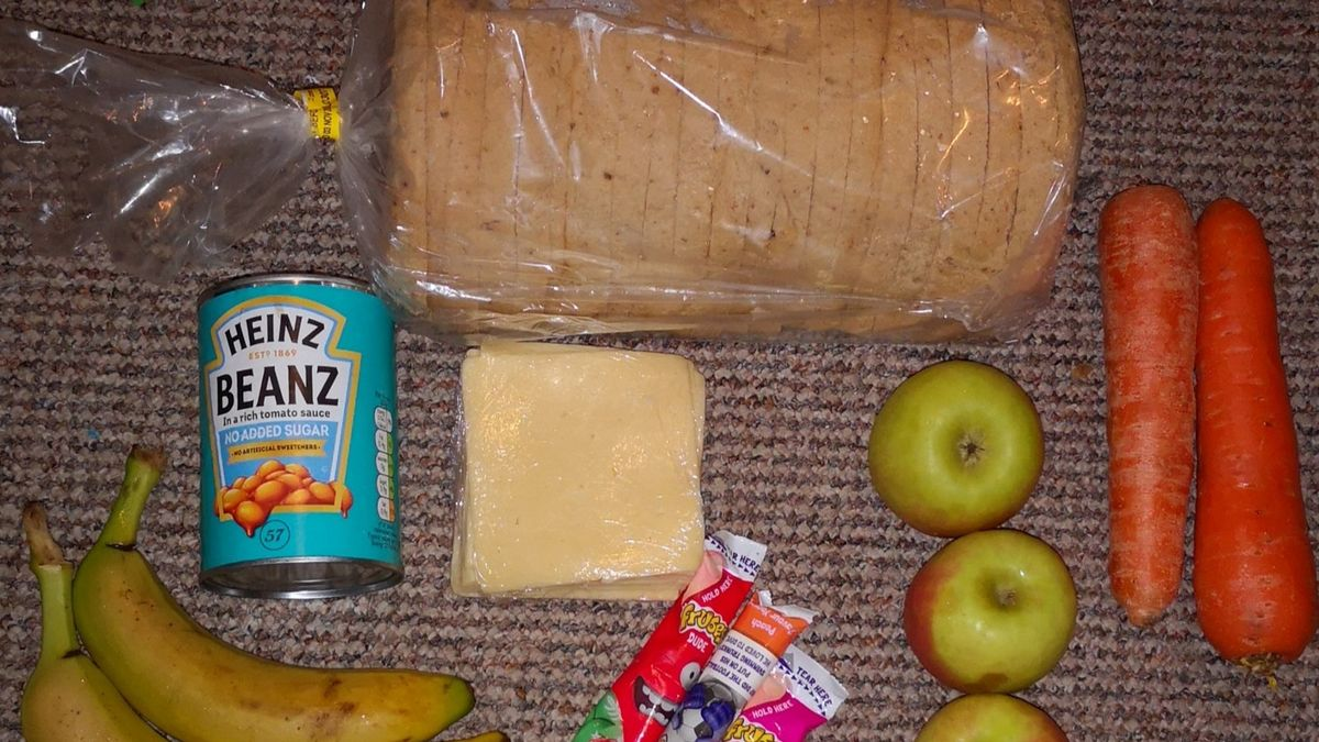 A photo of one can of beans, two slices of cheese, two carrots, three apples, and two bananas, designed to help feed two children for ten days