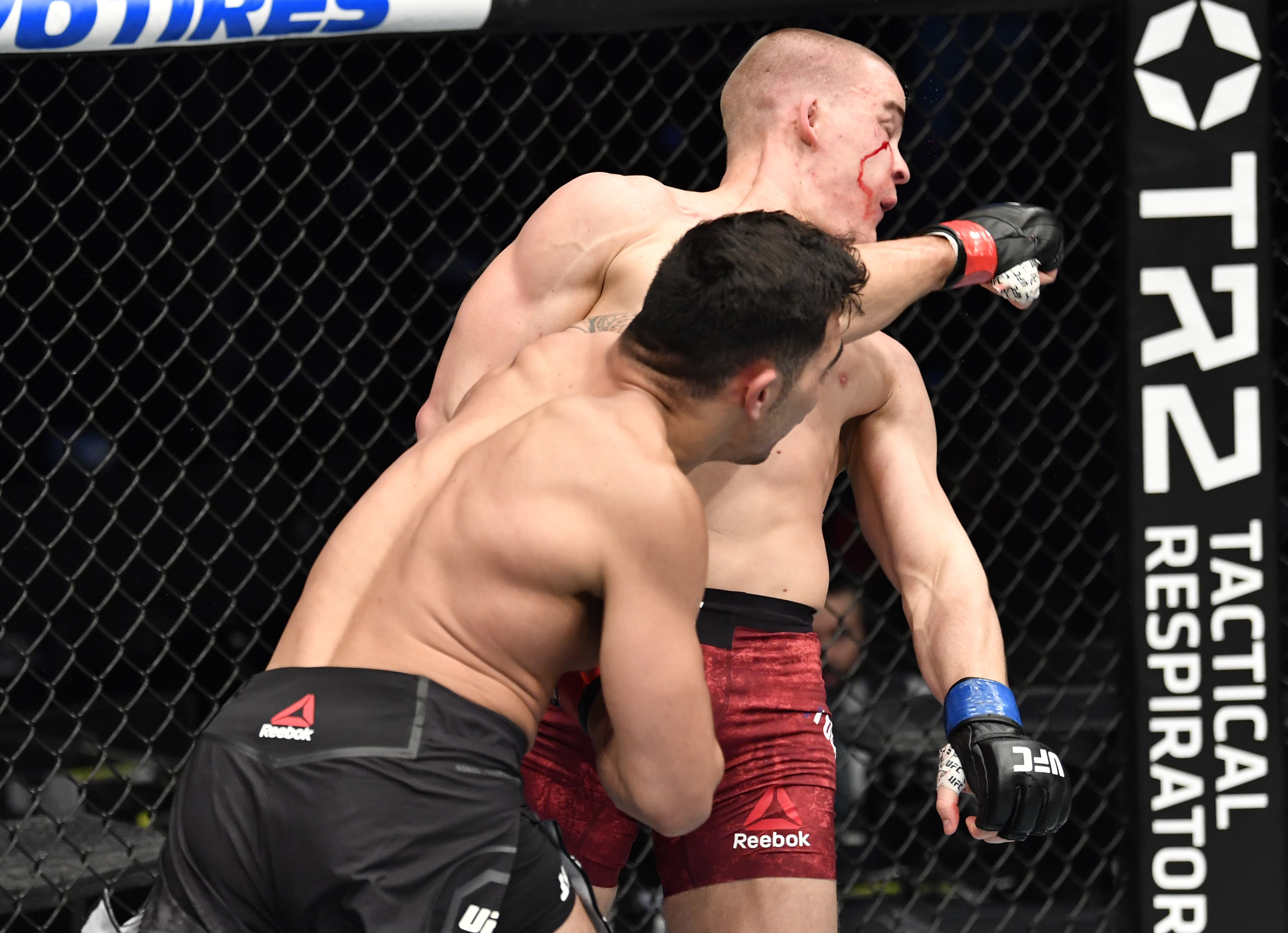 UFC Fight Night: Soriano v Todorovic