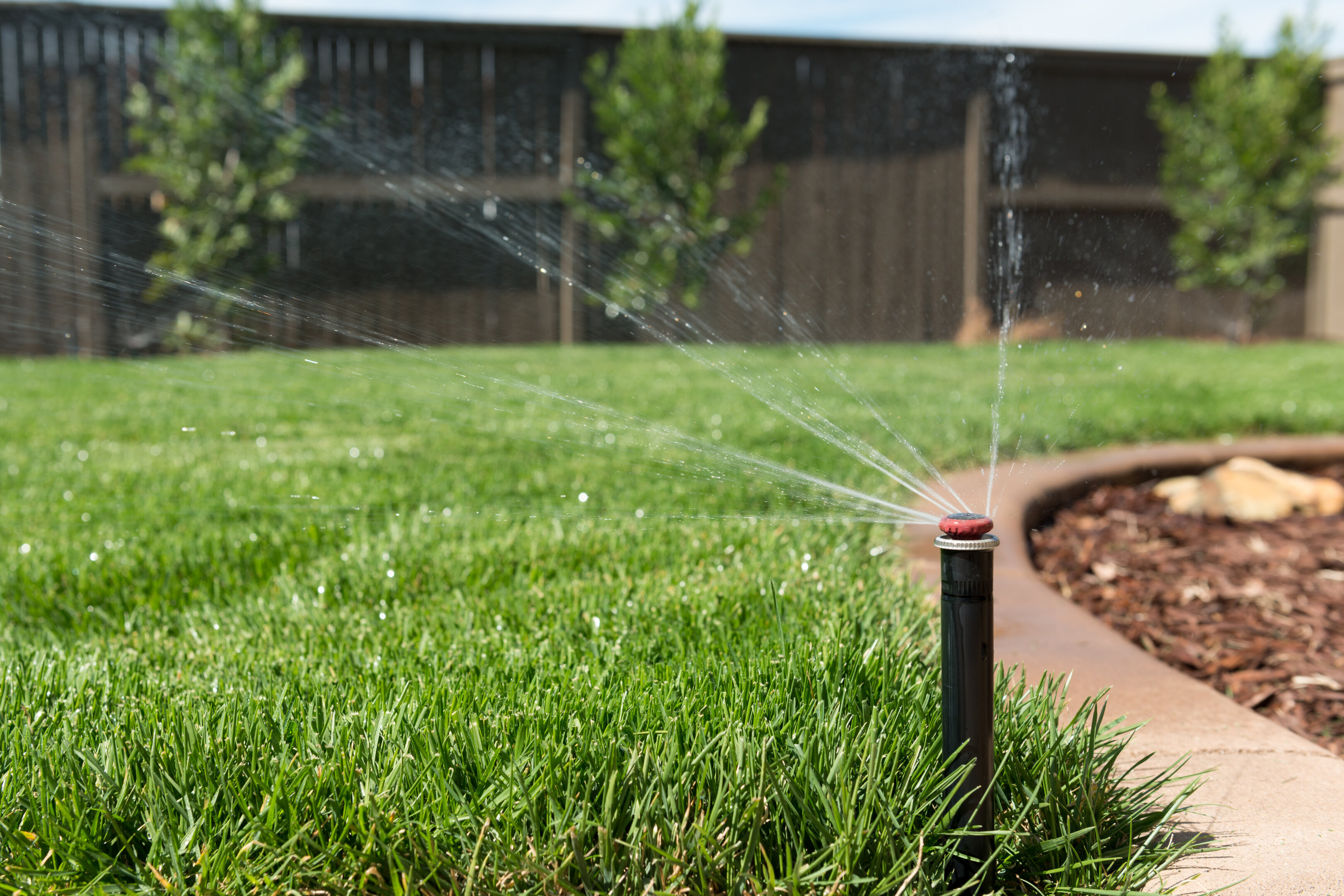 Close-up of a sprinkler in a yard