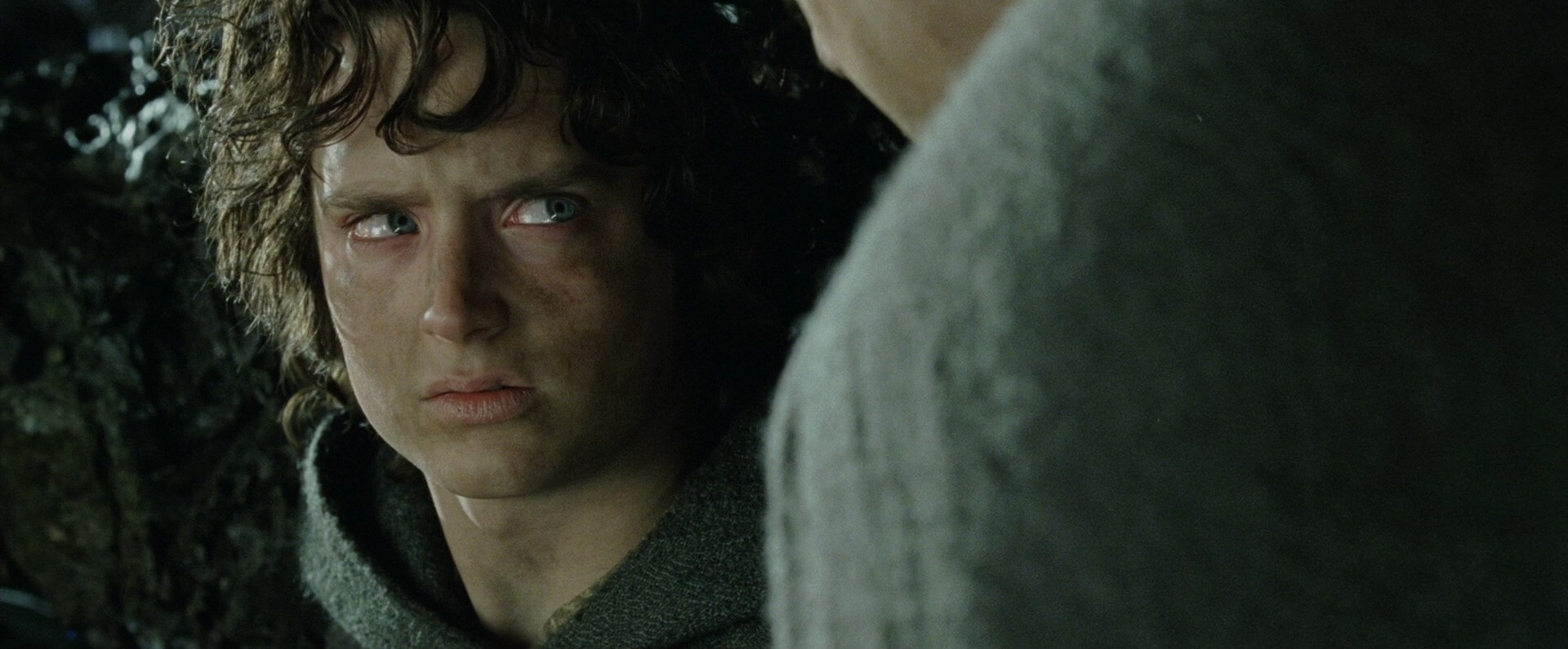 Frodo looks at Sam suspiciously in The Return of the King